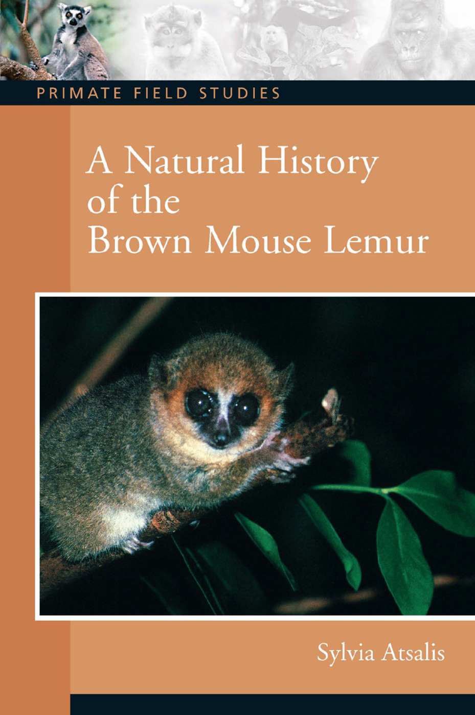 A Natural History of the Brown Mouse Lemur: 1st Edition (Paperback) book cover