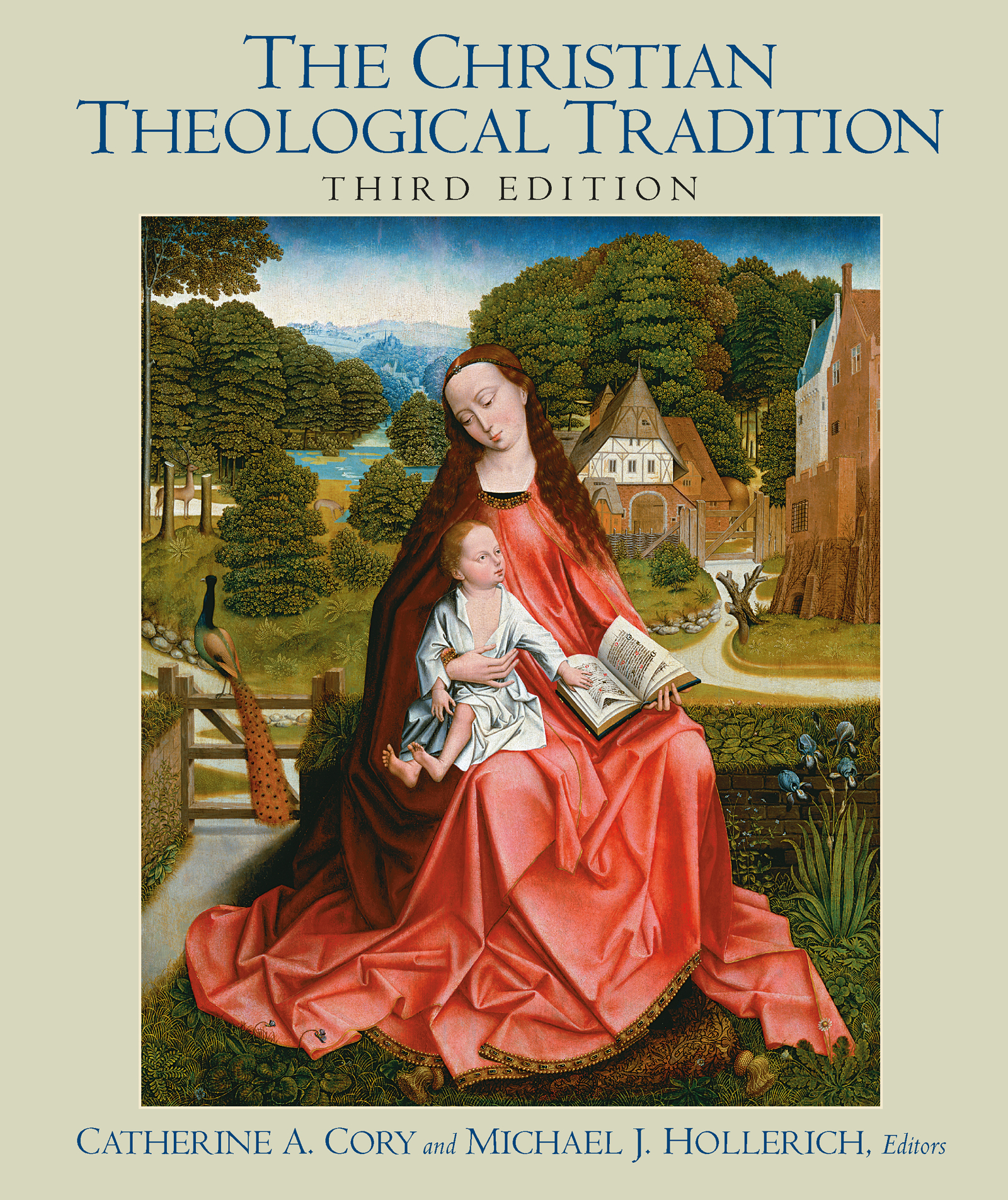 Christian Theological Tradition book cover