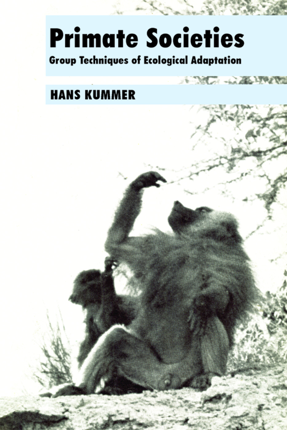 Primate Societies: Group Techniques of Ecological Adaptation, 1st Edition (Paperback) book cover