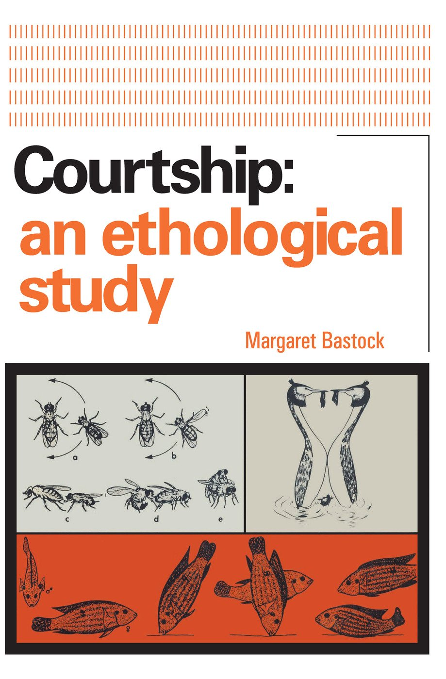 Courtship: An Ethological Study, 1st Edition (Paperback) book cover