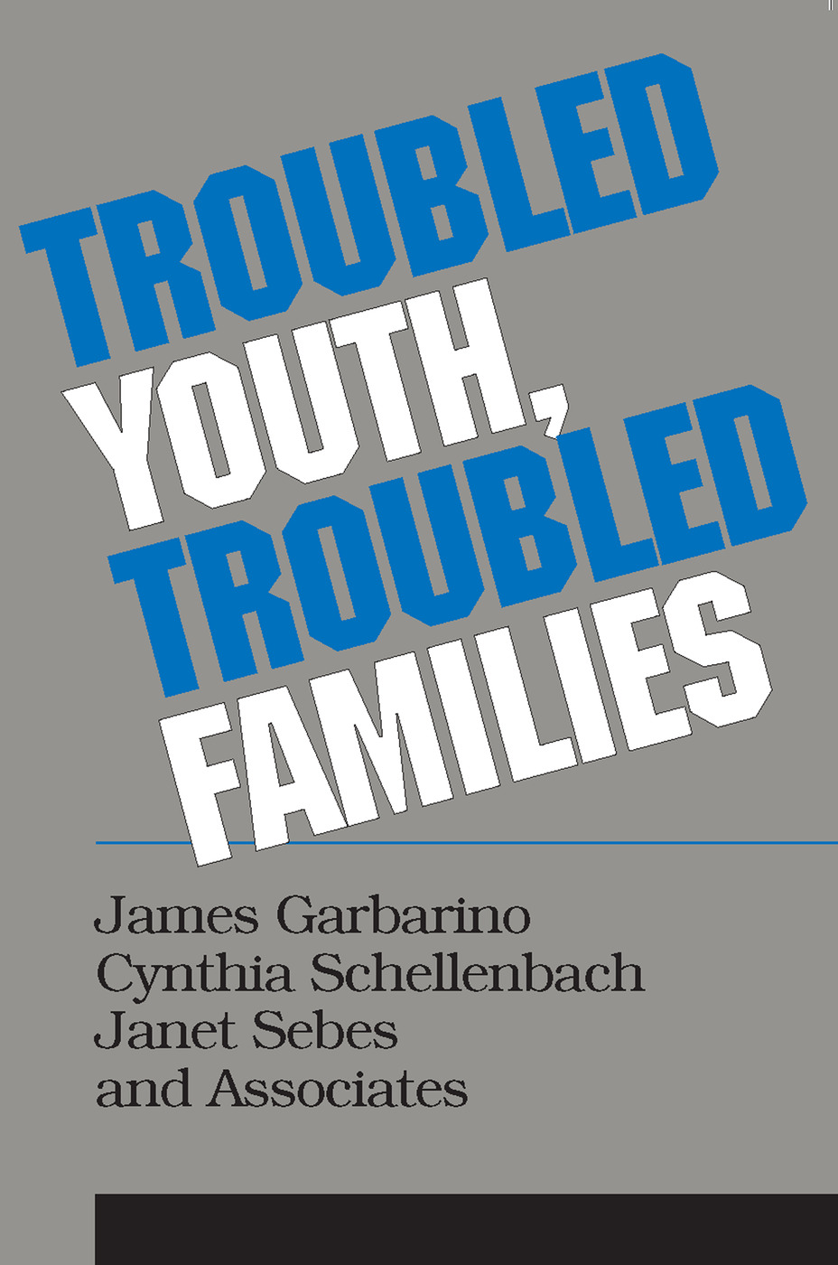 Troubled Youth, Troubled Families: Understanding Families at Risk for Adolescent Maltreatment, 1st Edition (Paperback) book cover