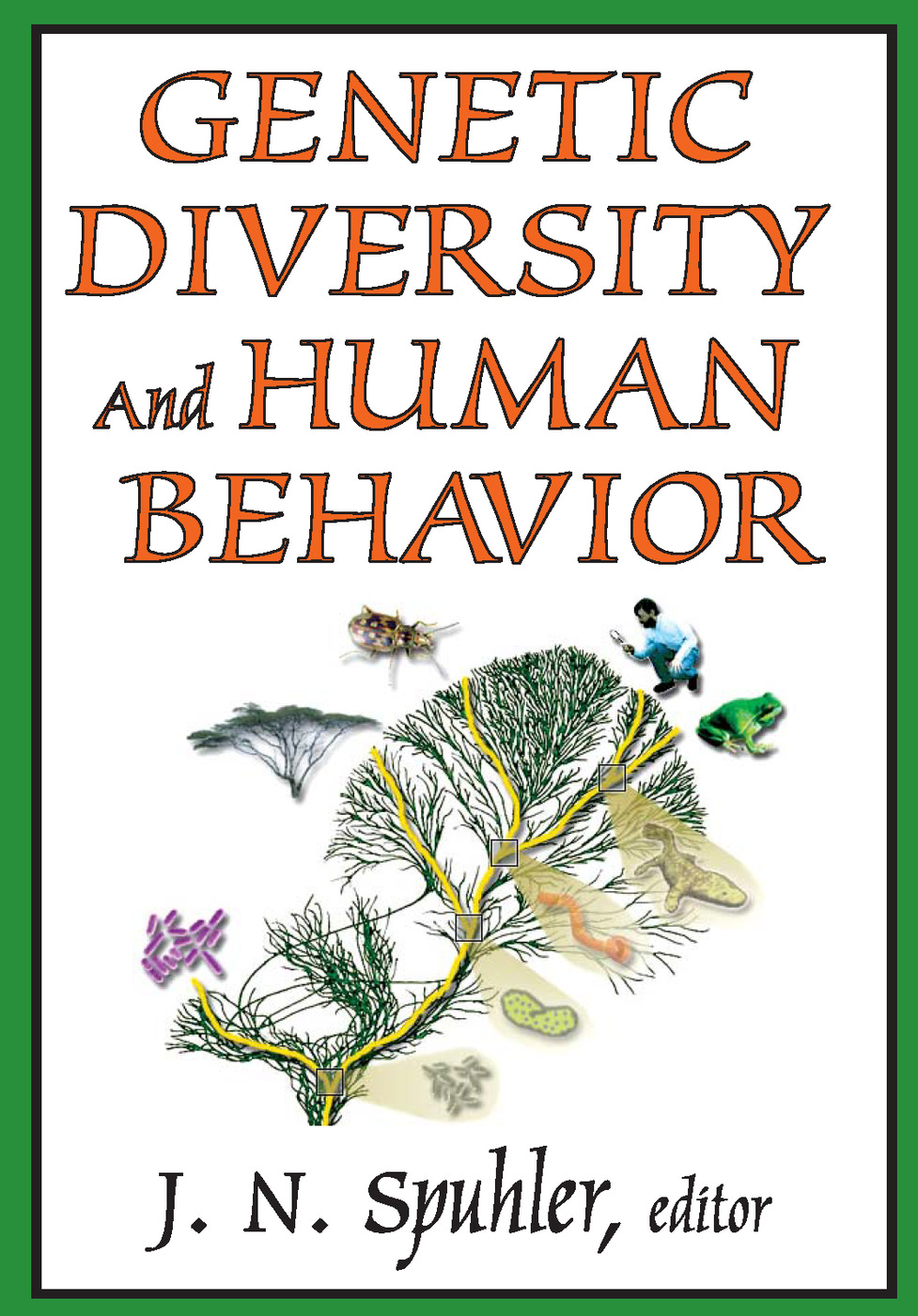 Genetic Diversity and Human Behavior: 1st Edition (Paperback) book cover