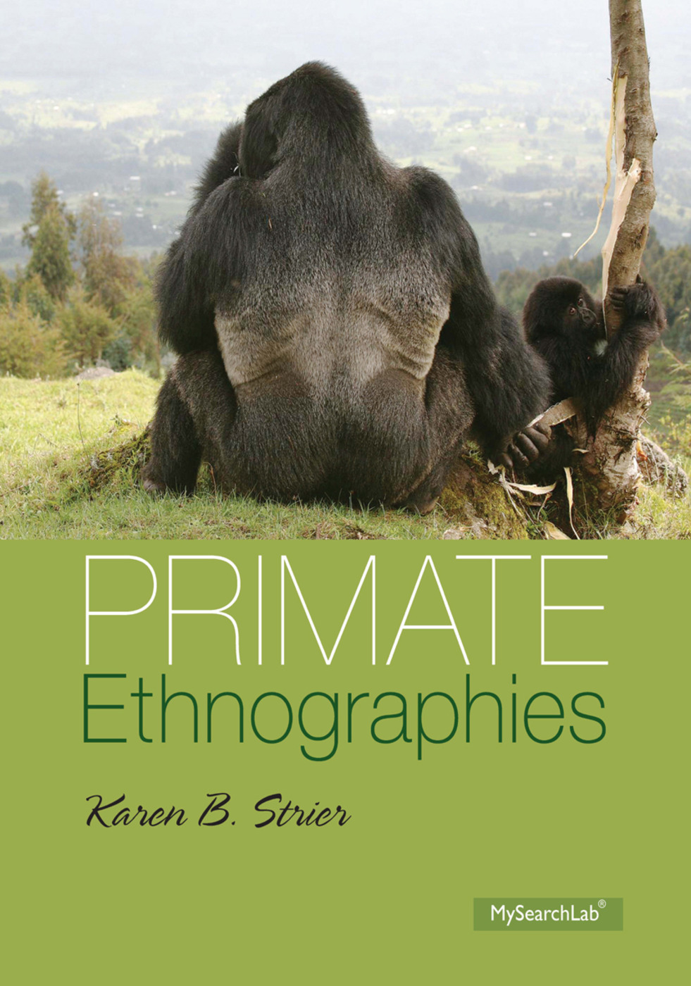 Primate Ethnographies: 1st Edition (Paperback) book cover