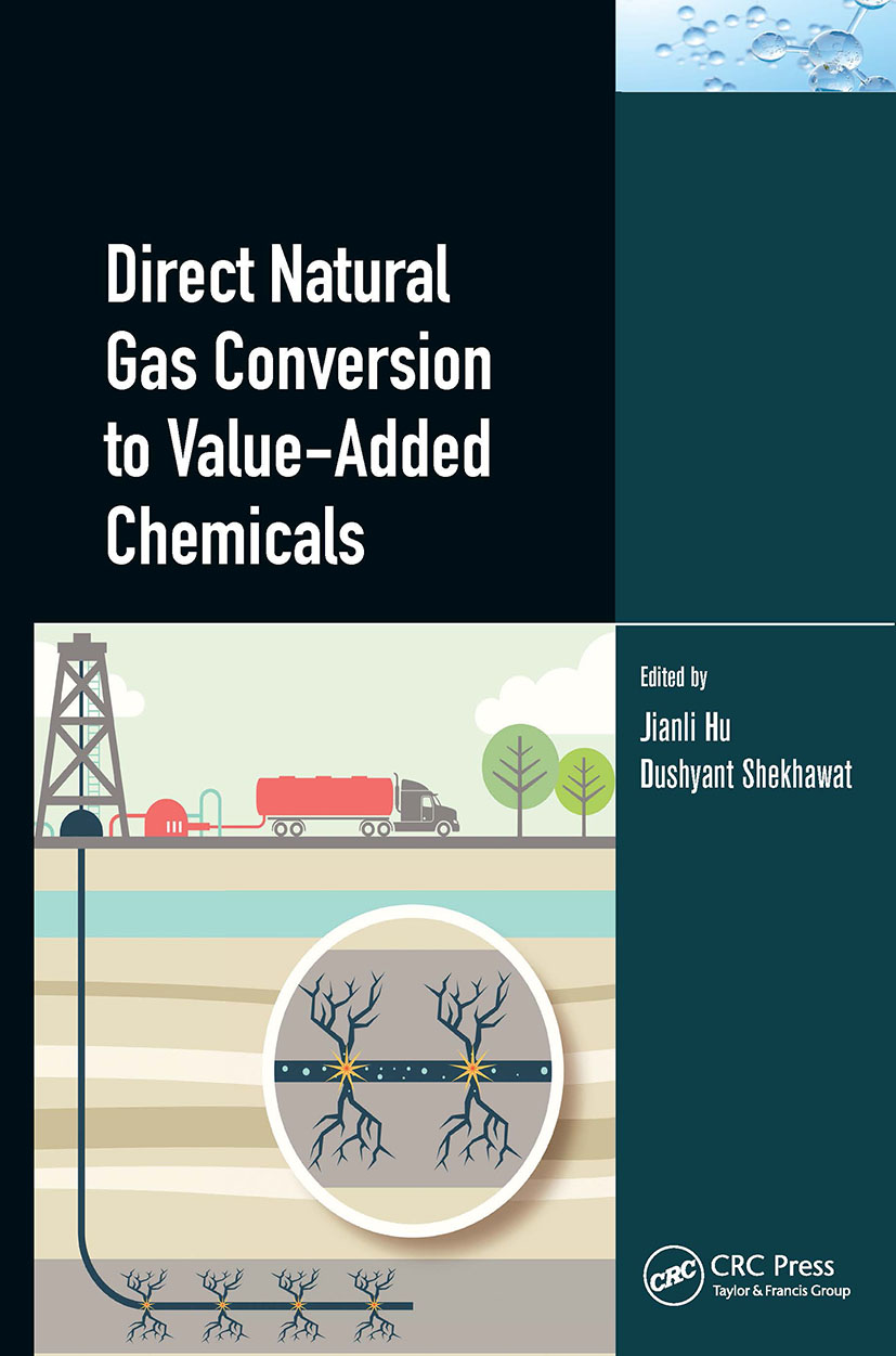 Direct Natural Gas Conversion to Value-Added Chemicals book cover