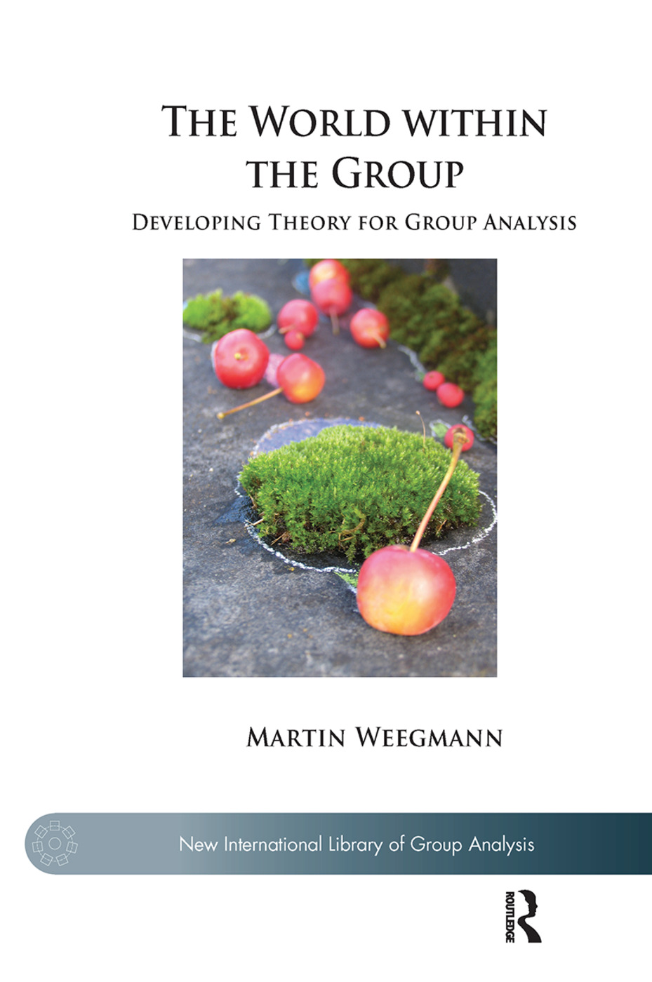 The World within the Group: Developing Theory for Group Analysis book cover