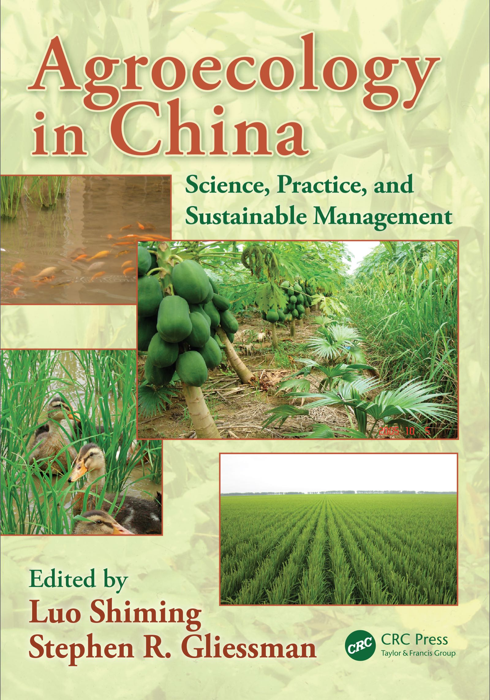 Agroecology in China: Science, Practice, and Sustainable Management book cover