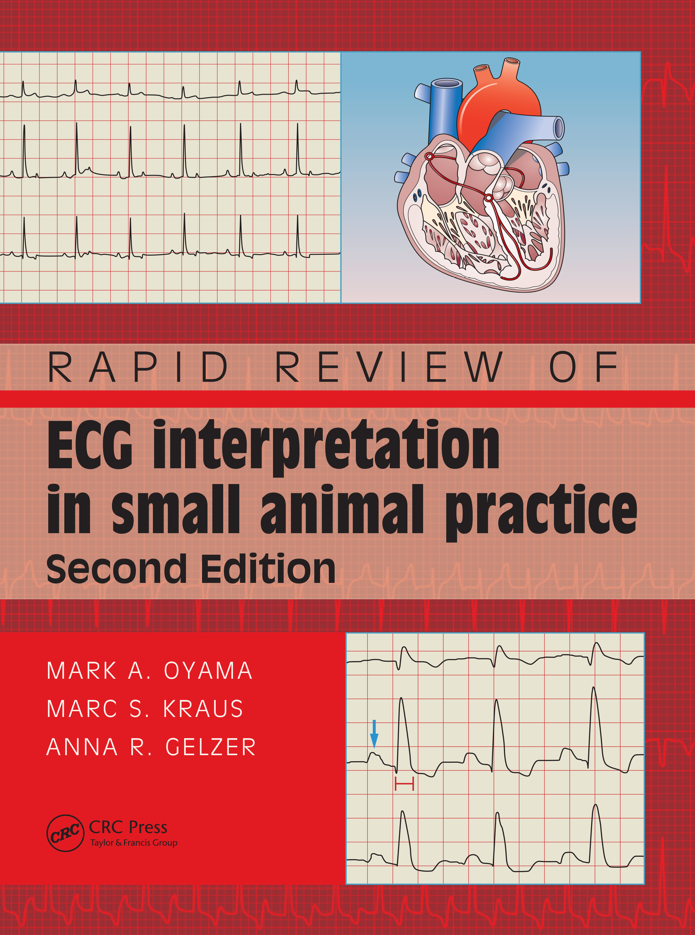 Rapid Review of ECG Interpretation in Small Animal Practice: 2nd Edition (Paperback) book cover