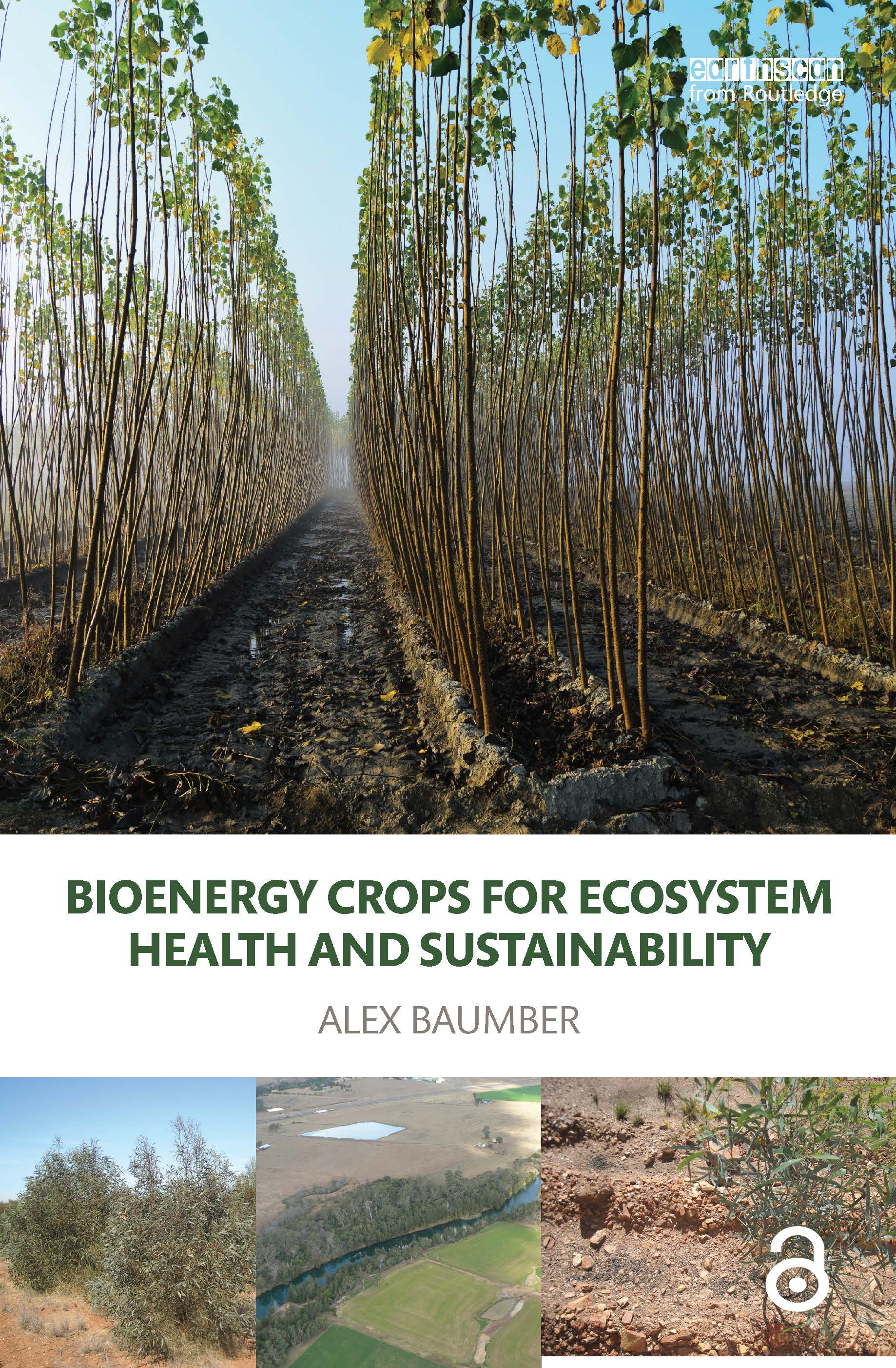 Bioenergy Crops for Ecosystem Health and Sustainability book cover