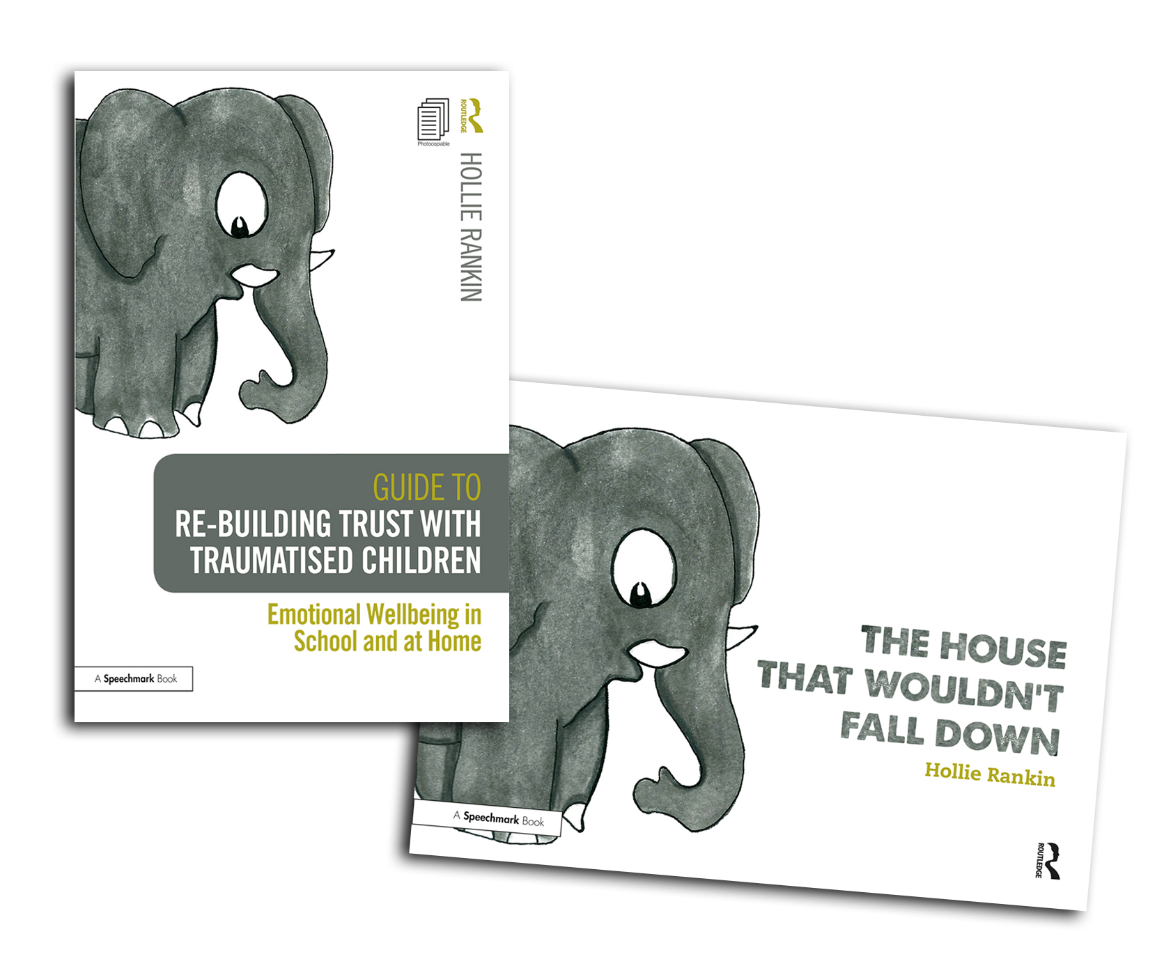 Re-building Trust with Traumatised Children & The House that Wouldn't Fall Down book cover