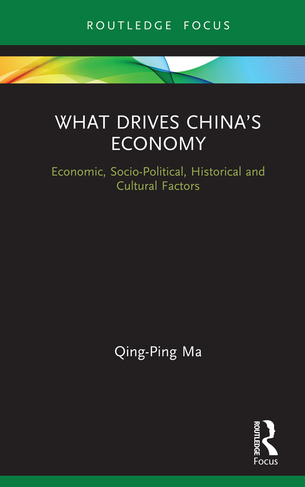 What Drives China's Economy: Economic, Socio-Political, Historical and Cultural Factors book cover