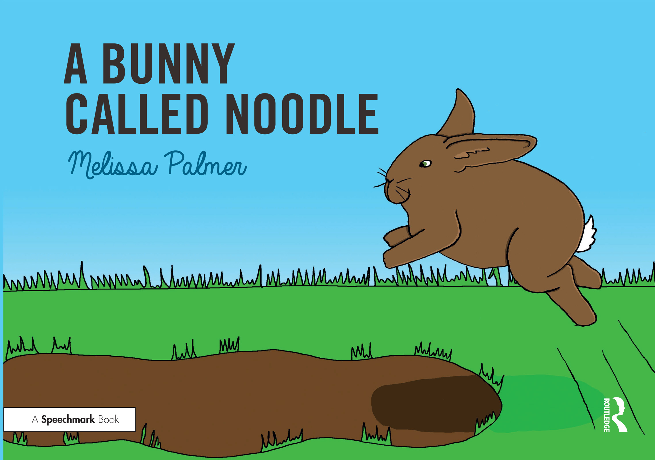 A Bunny Called Noodle book cover