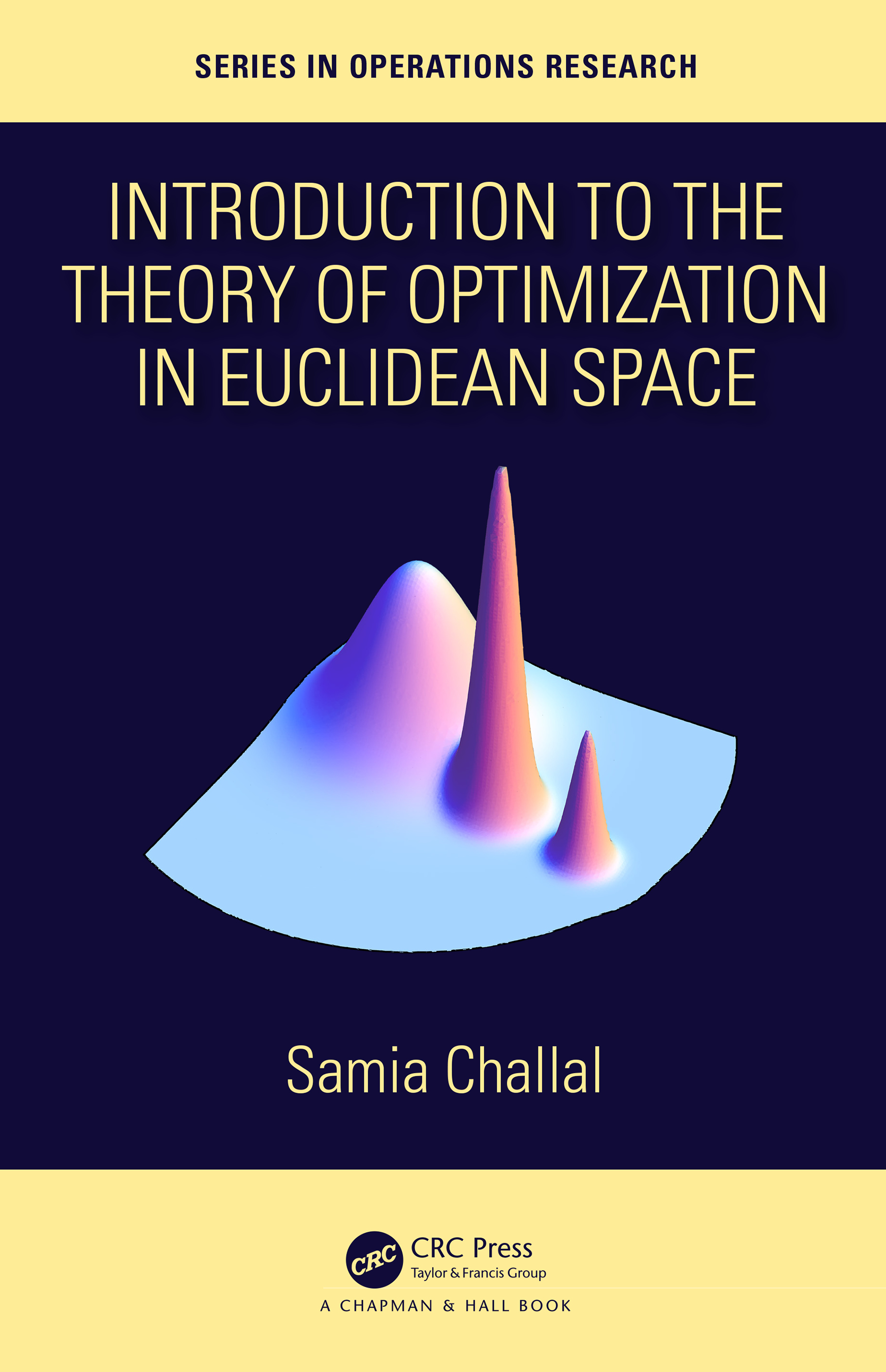 Introduction to the Theory of Optimization in Euclidean Space: 1st Edition (Hardback) book cover