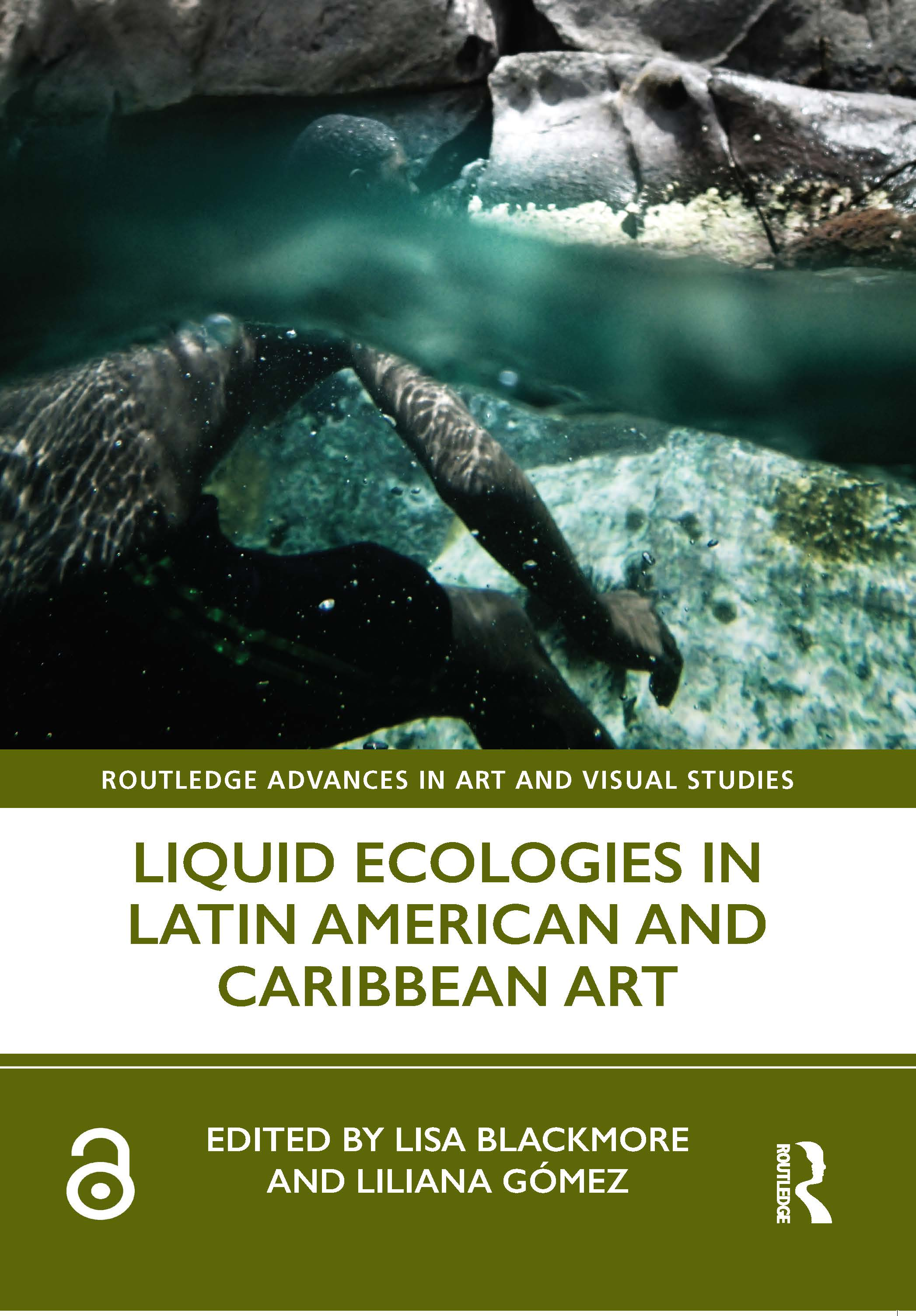 Liquid Ecologies in Latin American and Caribbean Art book cover