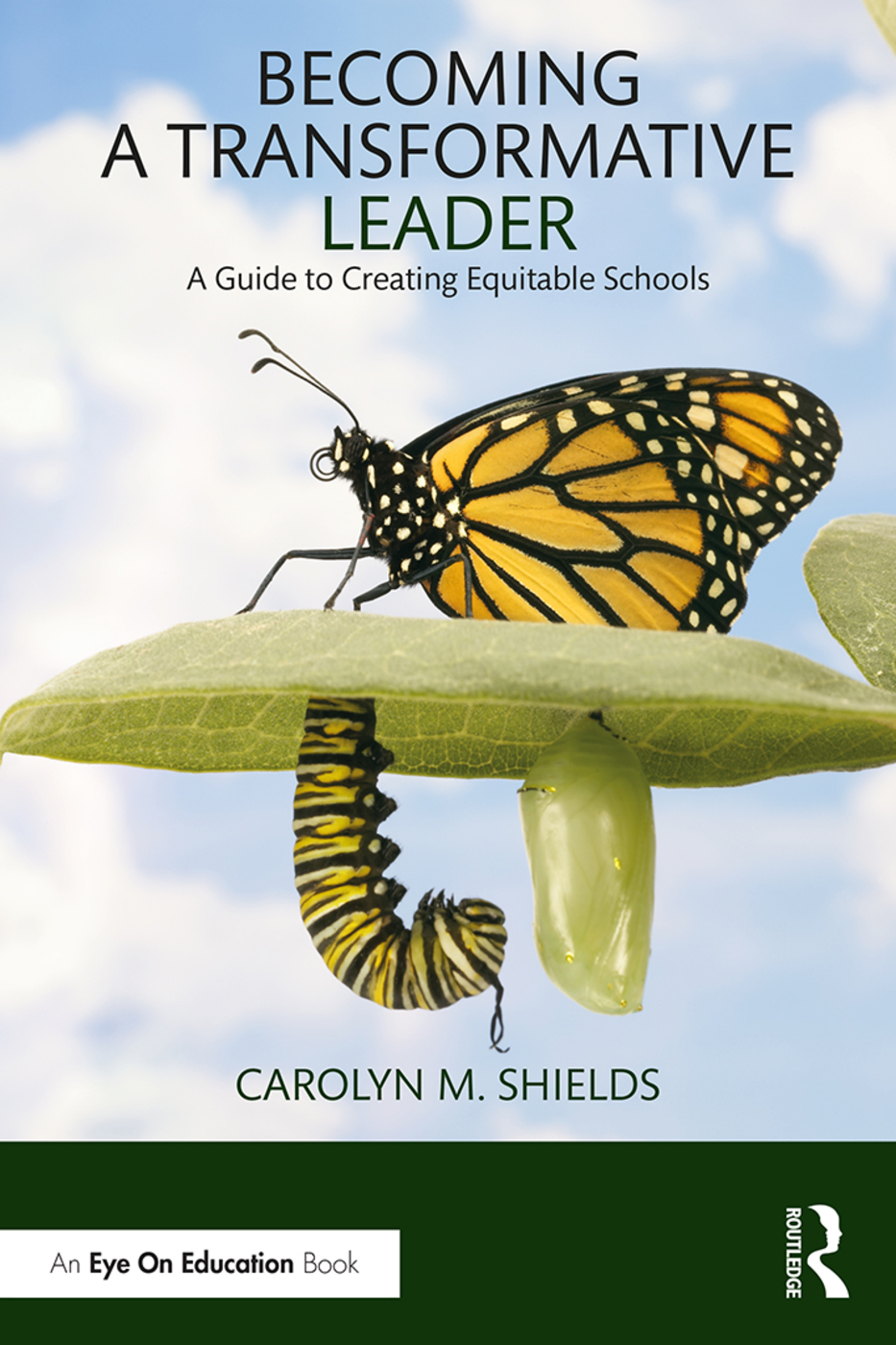 Becoming a Transformative Leader: A Guide to Creating Equitable Schools book cover