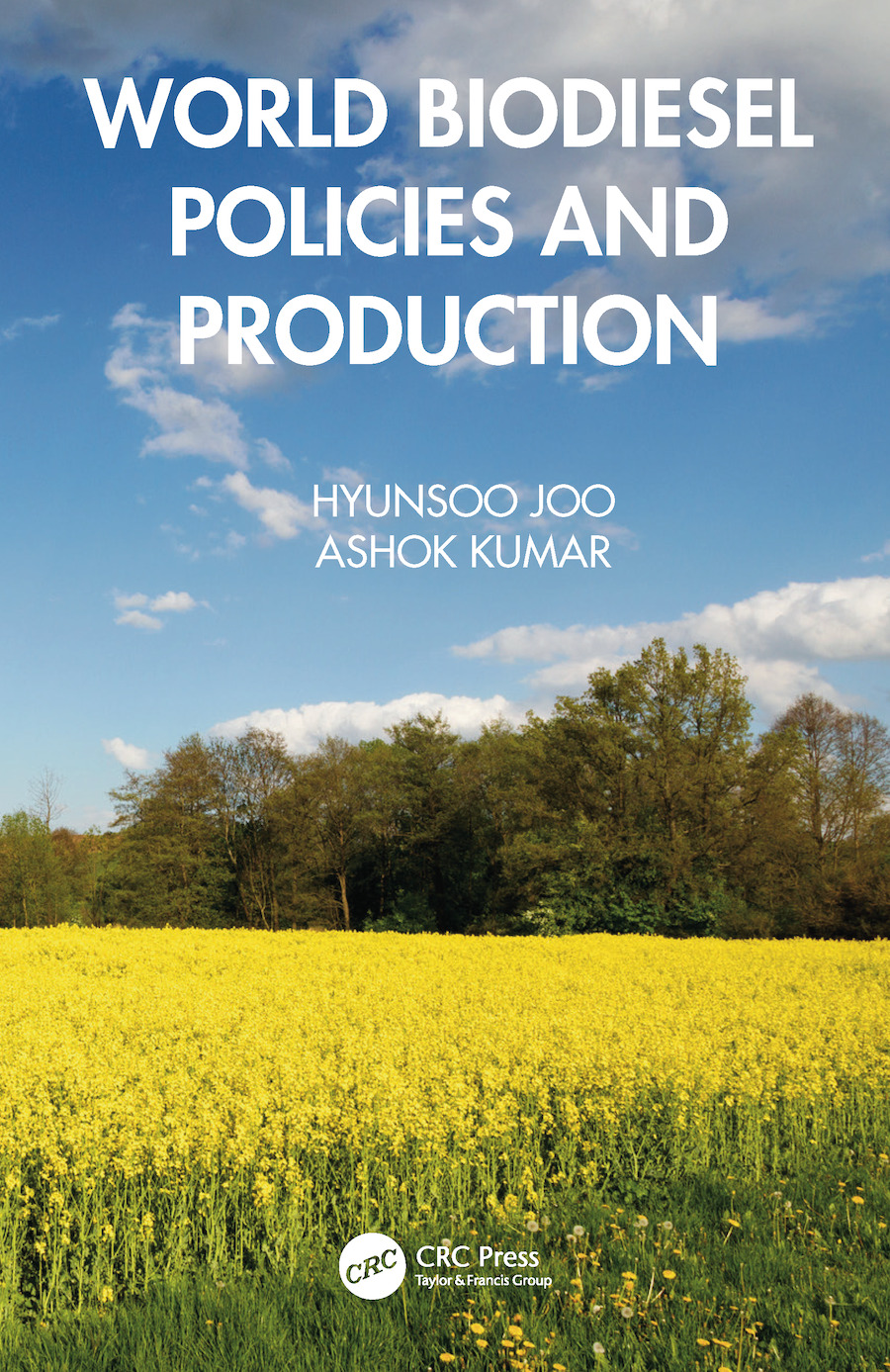 World Biodiesel Policies and Production book cover