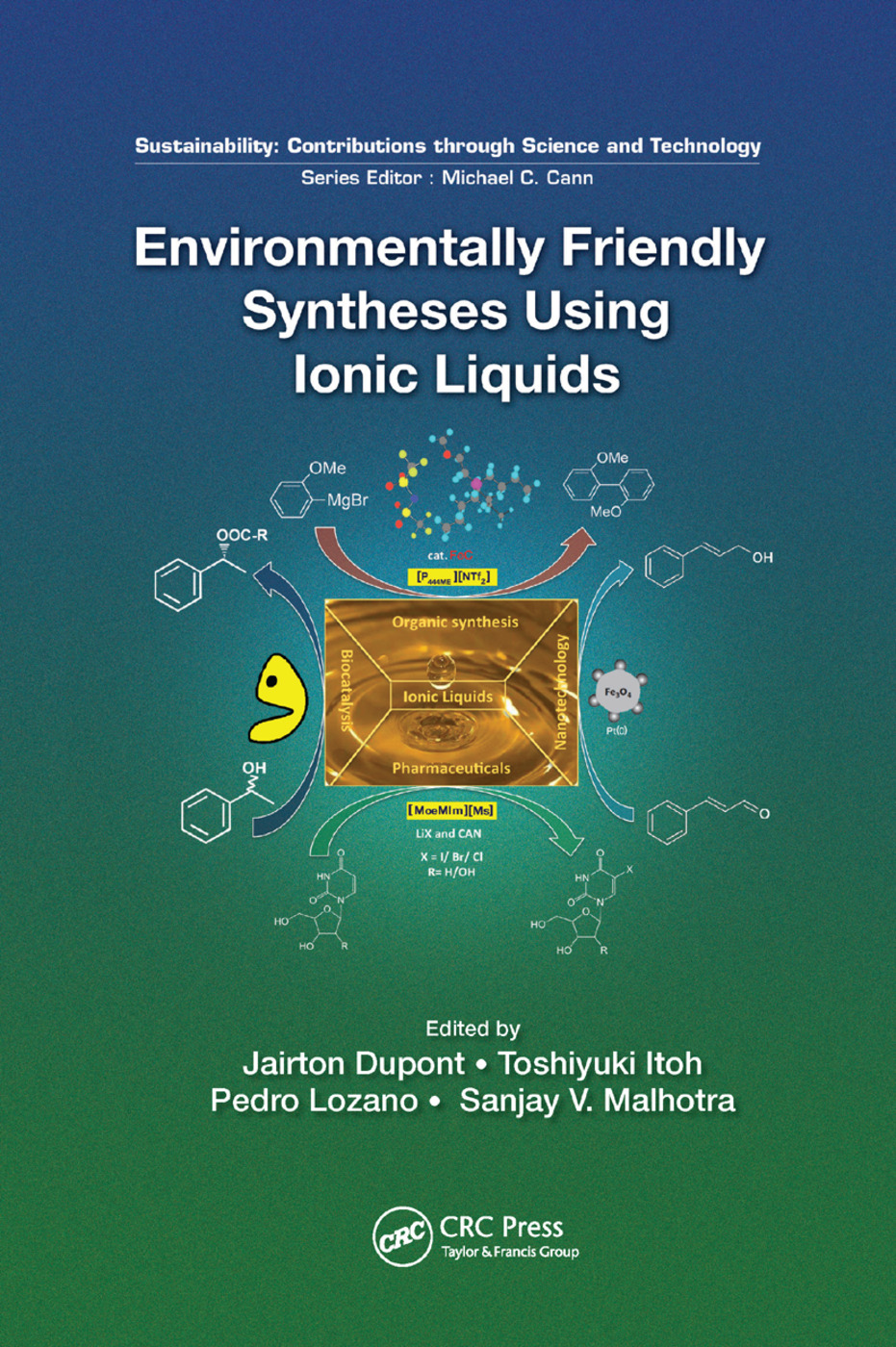 Environmentally Friendly Syntheses Using Ionic Liquids: 1st Edition (Paperback) book cover
