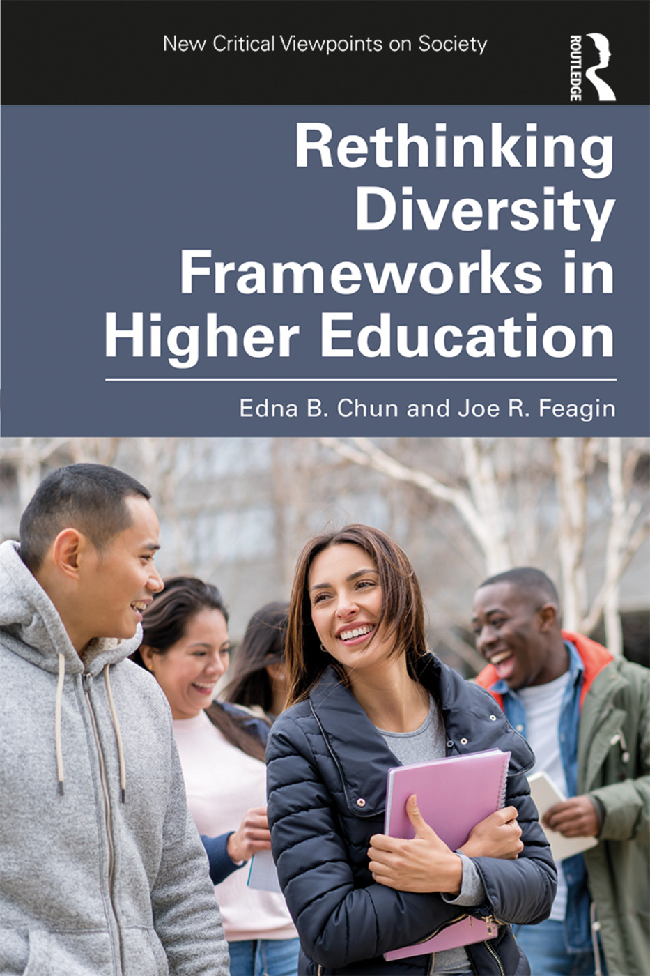 Rethinking Diversity Frameworks in Higher Education book cover