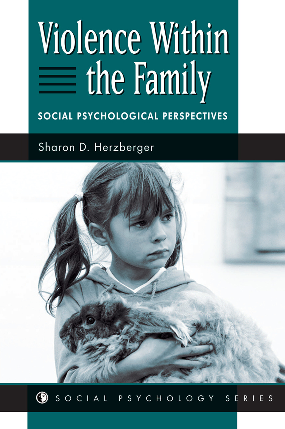 Violence Within The Family: Social Psychological Perspectives, 1st Edition (Hardback) book cover