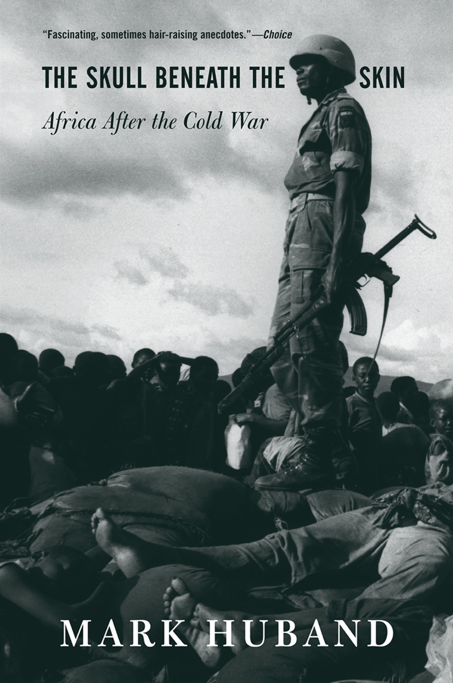 The Skull Beneath The Skin: Africa After The Cold War book cover