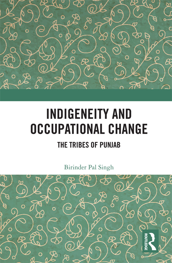 Indigeneity and Occupational Change: The Tribes of Punjab book cover