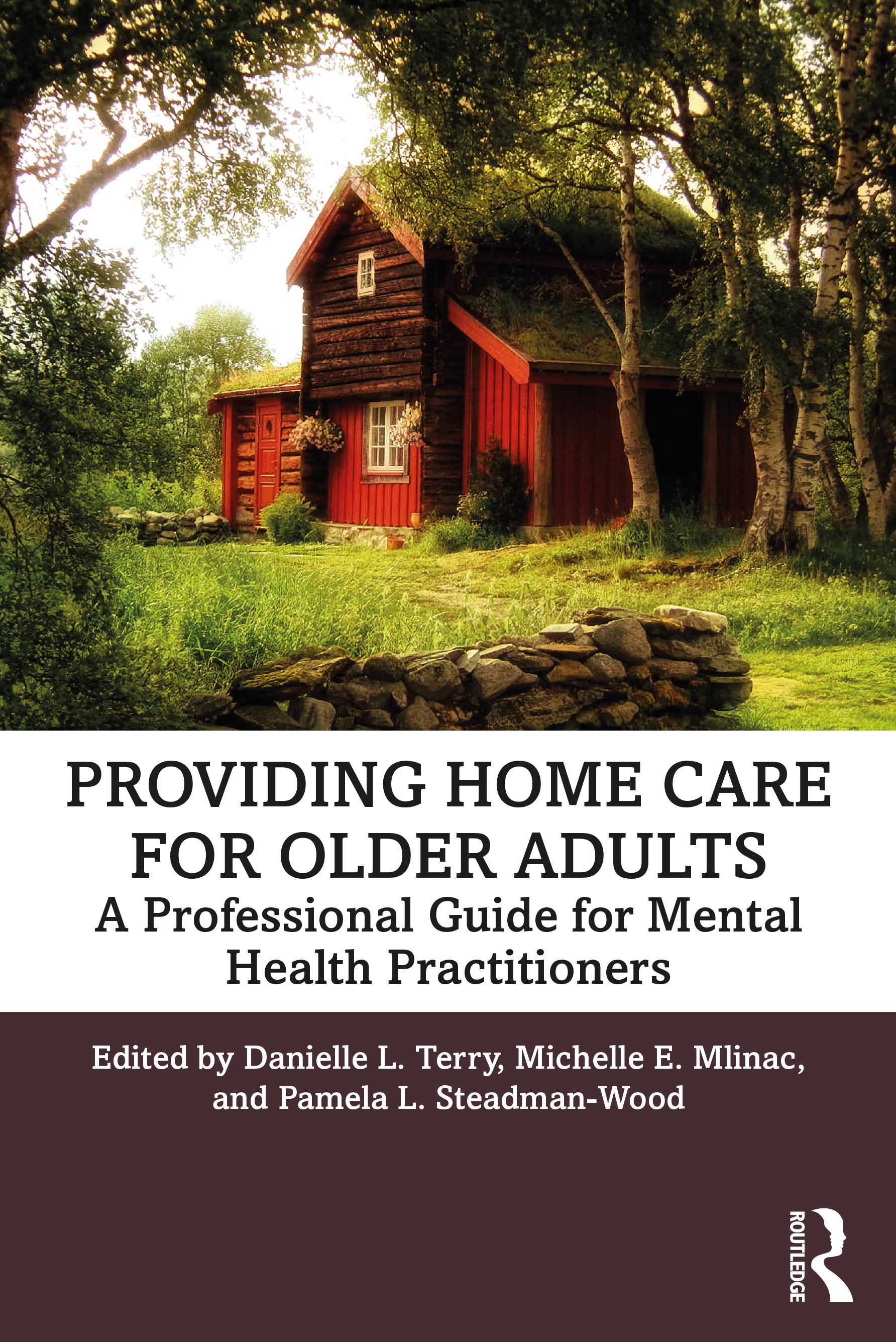 Providing Home Care for Older Adults: A Professional Guide for Mental Health Practitioners book cover