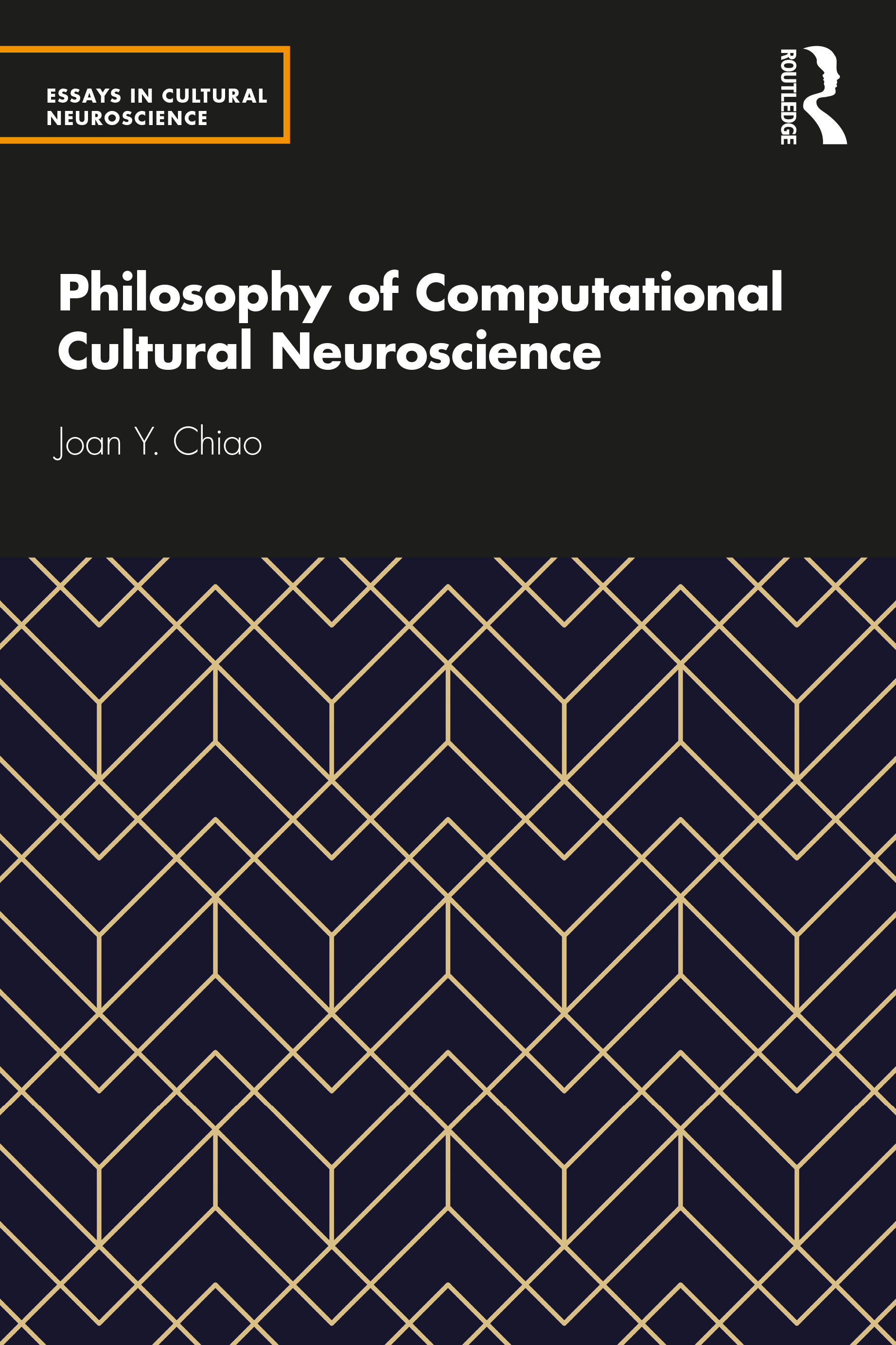 Philosophy of Computational Cultural Neuroscience book cover
