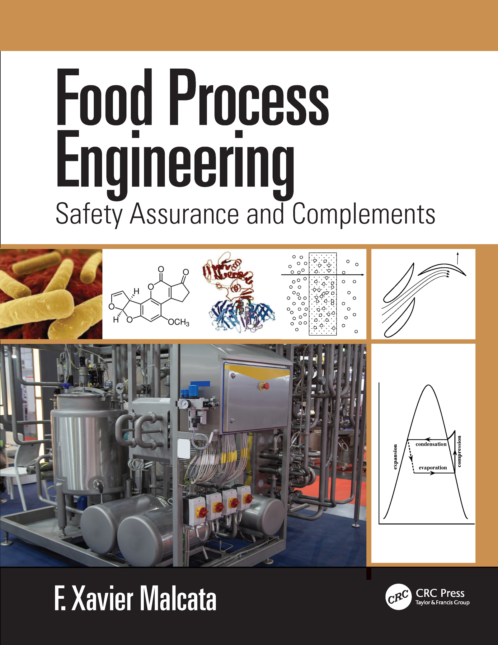 Food Process Engineering: Safety Assurance and Complements book cover