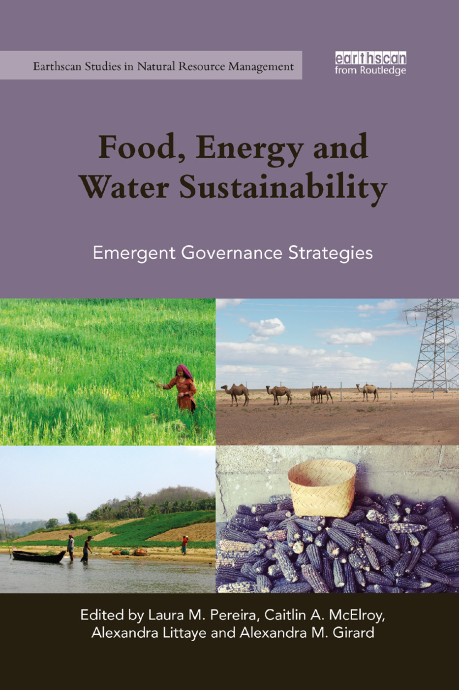 Food, Energy and Water Sustainability: Emergent Governance Strategies, 1st Edition (e-Book) book cover