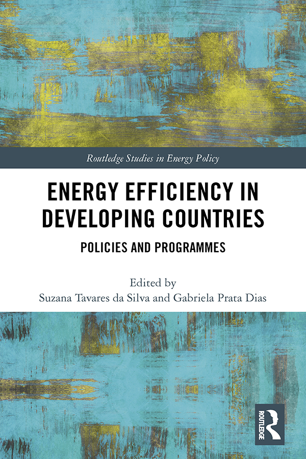 Energy Efficiency in Developing Countries: Policies and Programmes, 1st Edition (Hardback) book cover