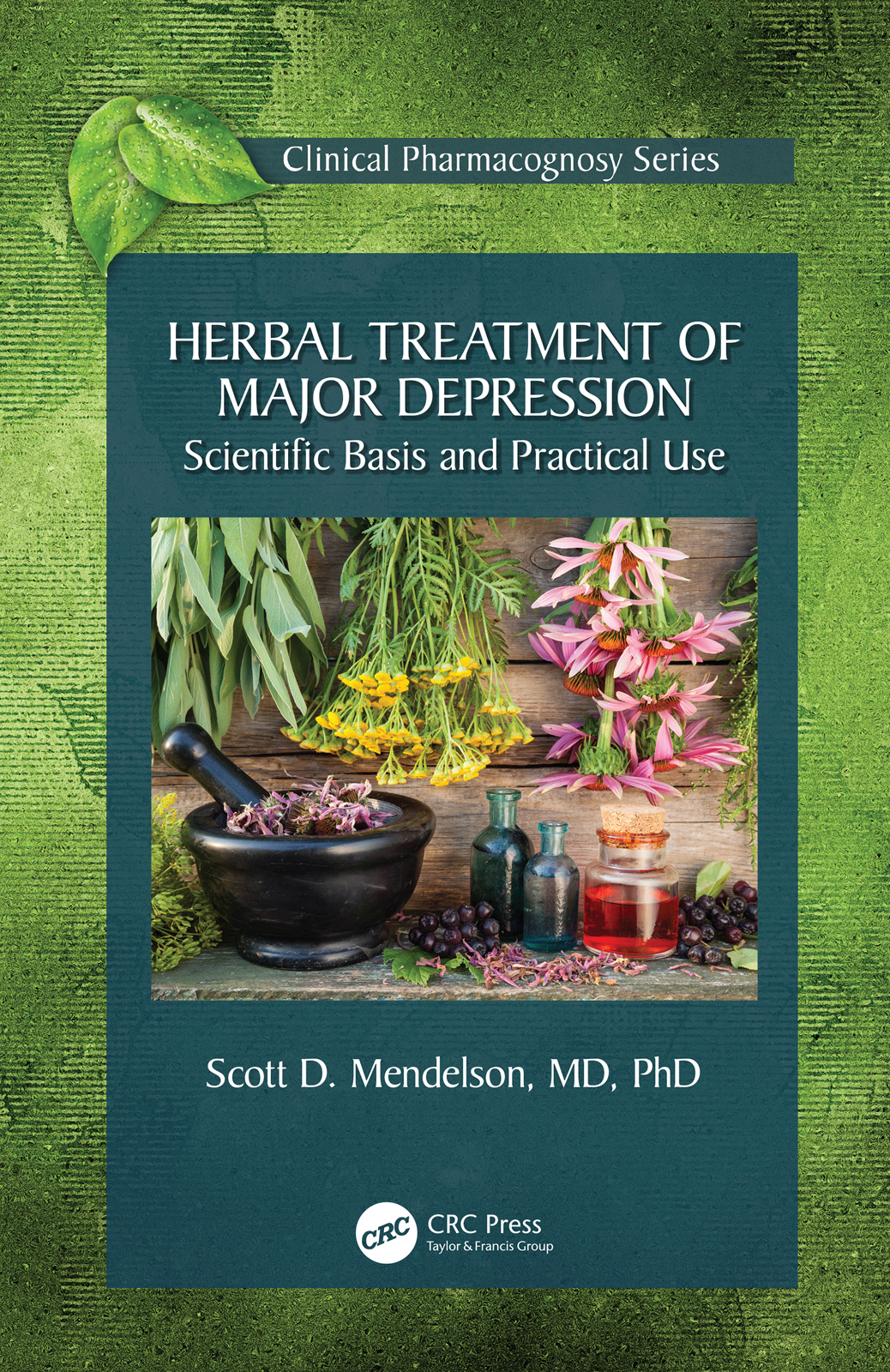 Herbal Treatment of Major Depression: Scientific Basis and Practical Use, 1st Edition (e-Book) book cover