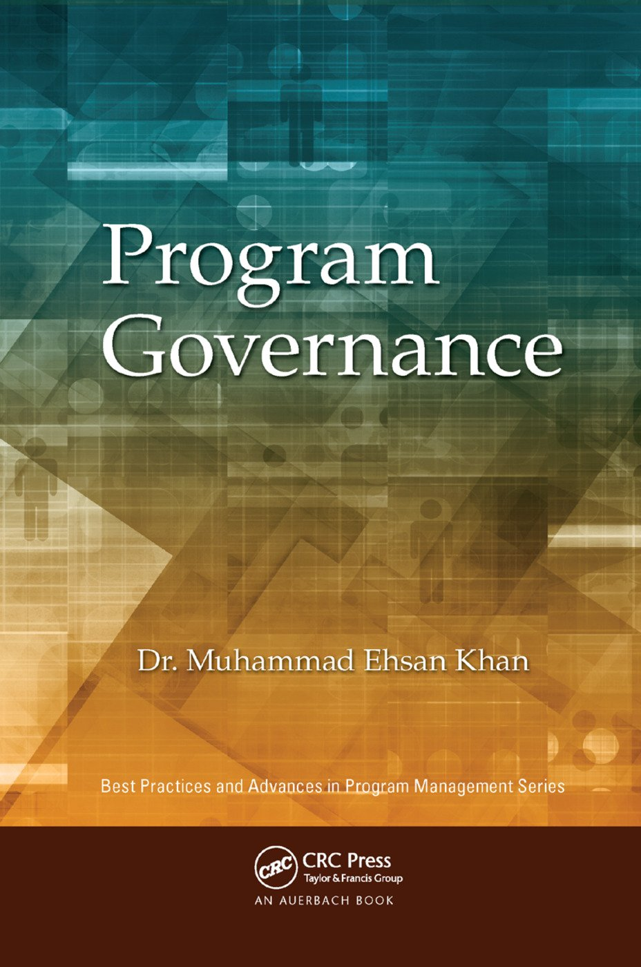 Program Governance: 1st Edition (Paperback) book cover