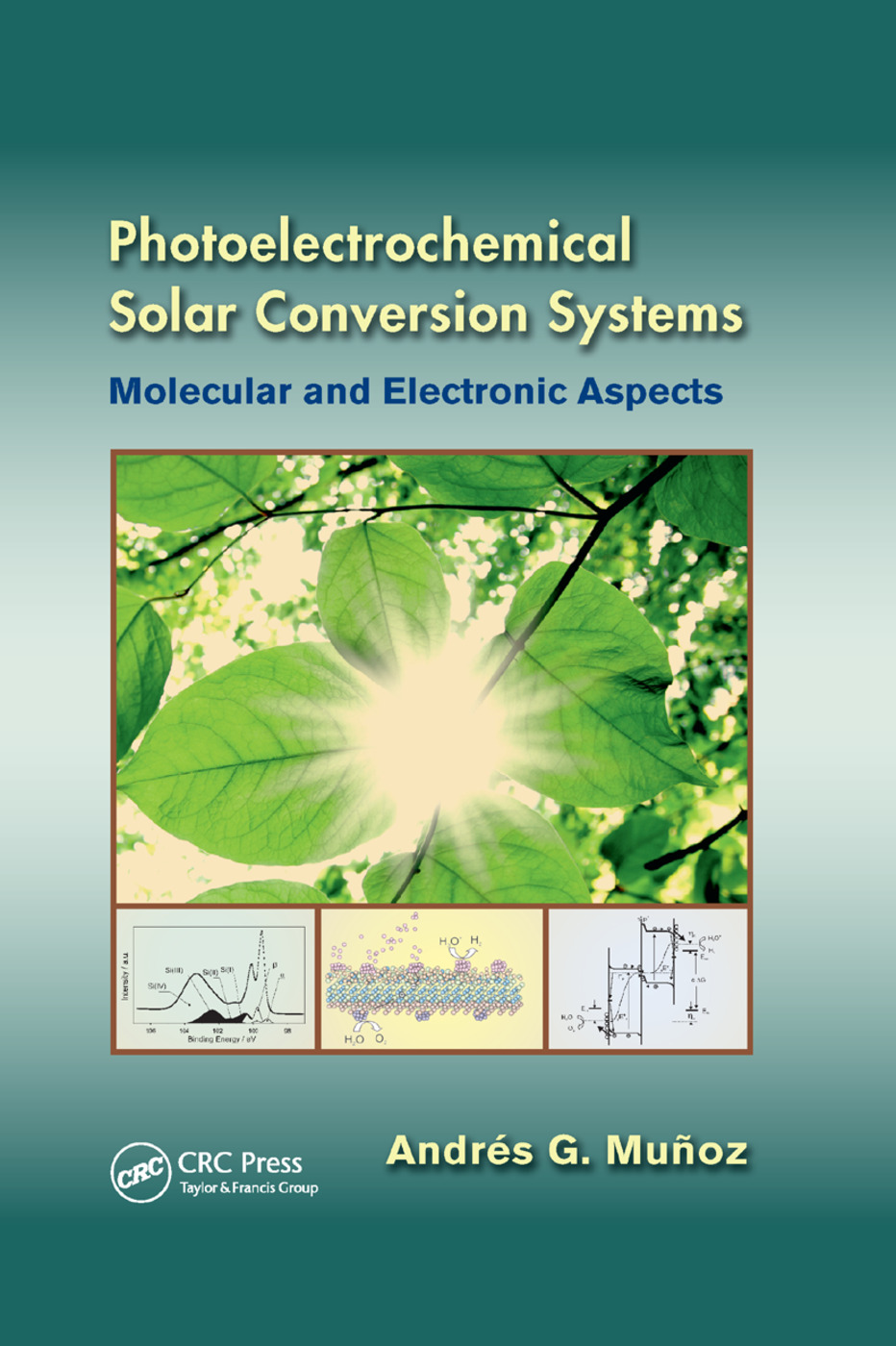 Photoelectrochemical Solar Conversion Systems: Molecular and Electronic Aspects book cover