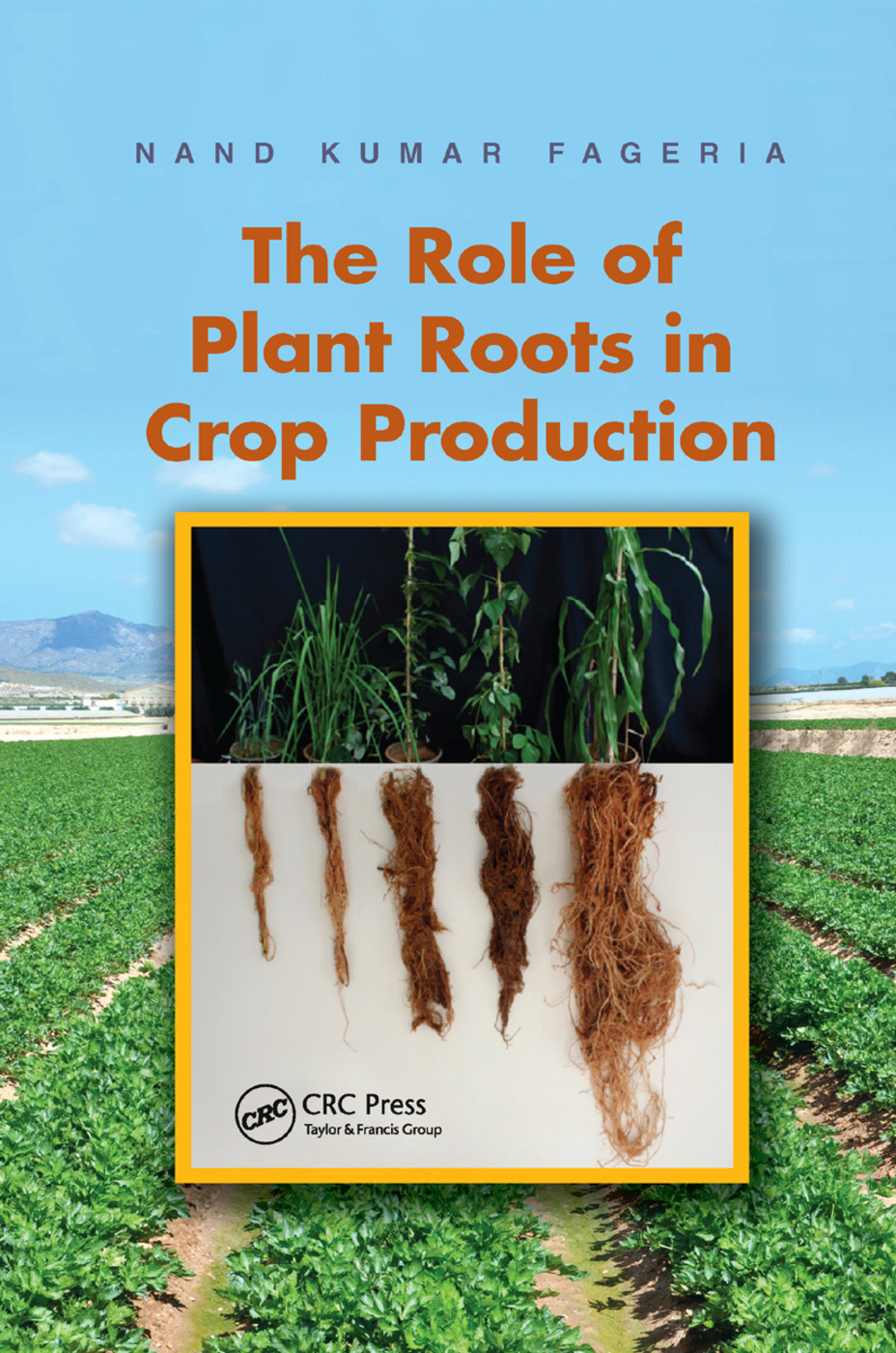 The Role of Plant Roots in Crop Production: 1st Edition (Paperback) book cover