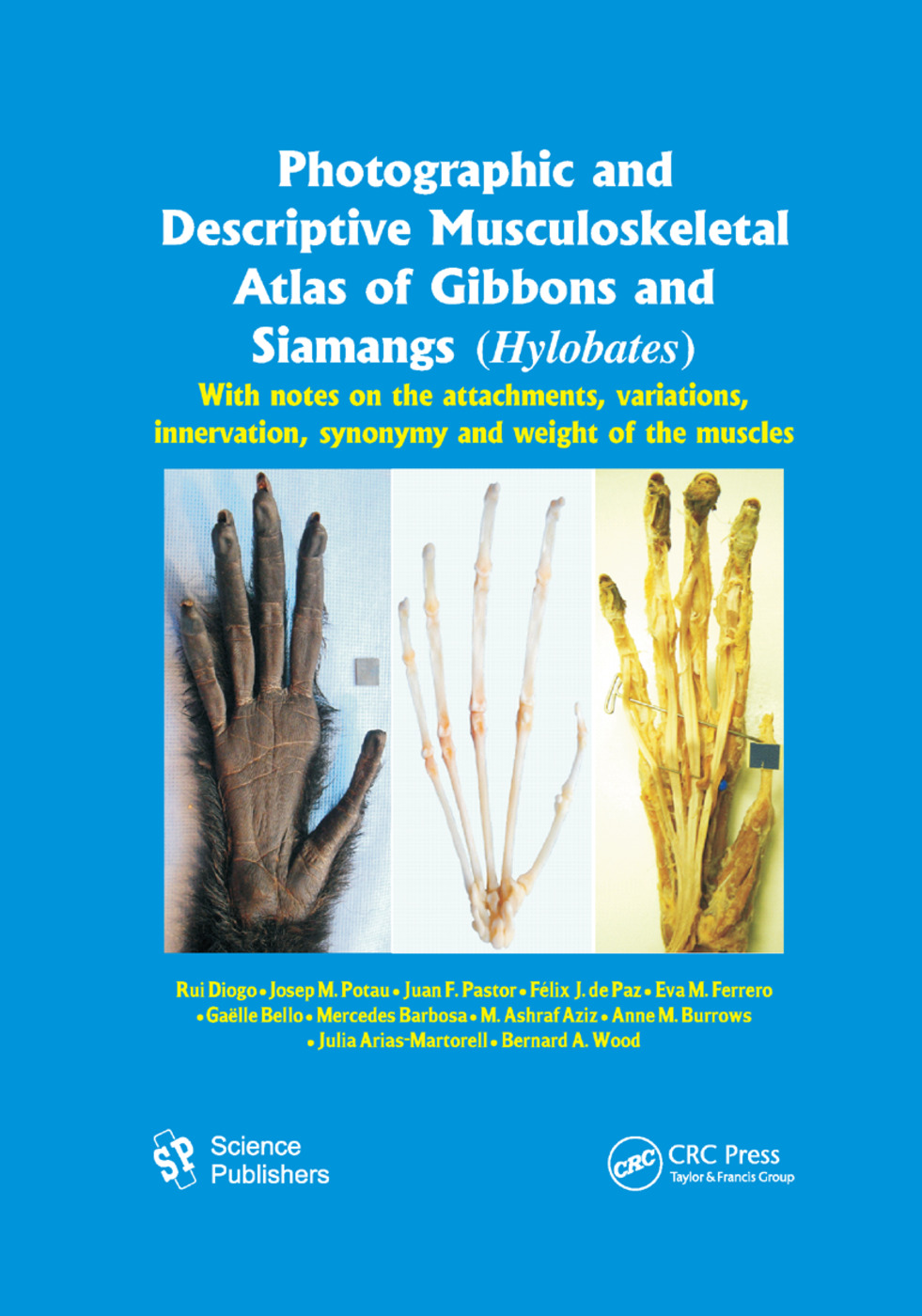 Photographic and Descriptive Musculoskeletal Atlas of Gibbons and Siamangs (Hylobates): With Notes on the Attachments, Variations, Innervation, Synonymy and Weight of the Muscles, 1st Edition (Paperback) book cover