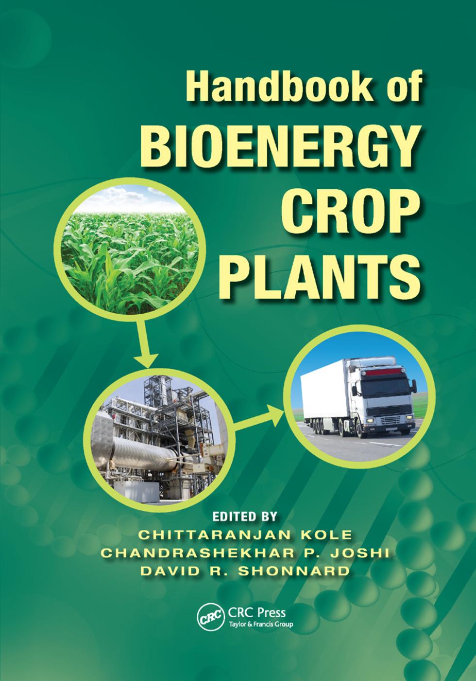 Handbook of Bioenergy Crop Plants: 1st Edition (Paperback) book cover