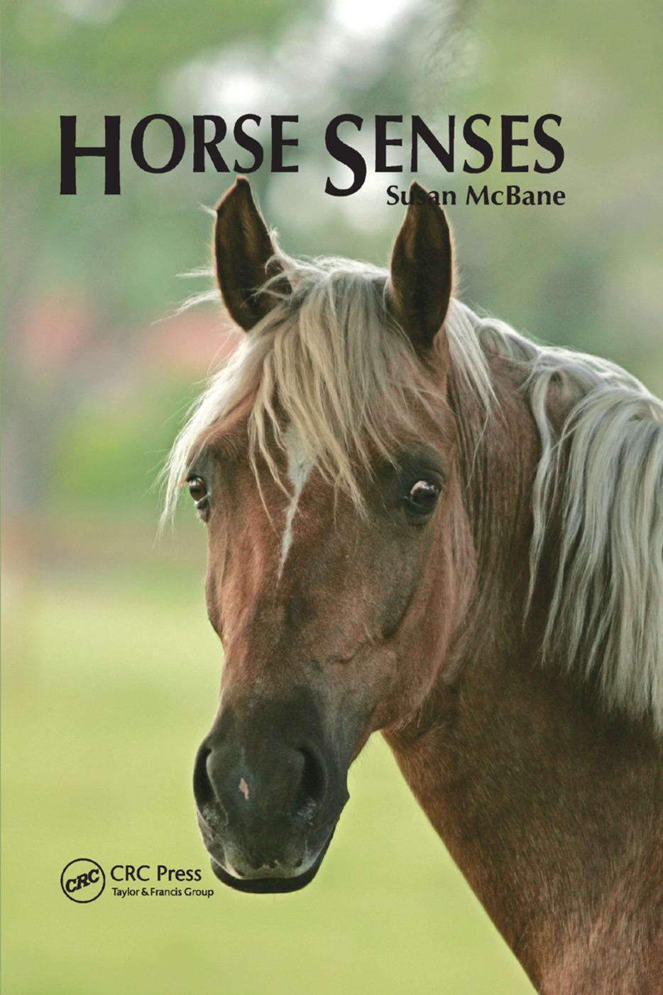 Horse Senses: 1st Edition (Paperback) book cover