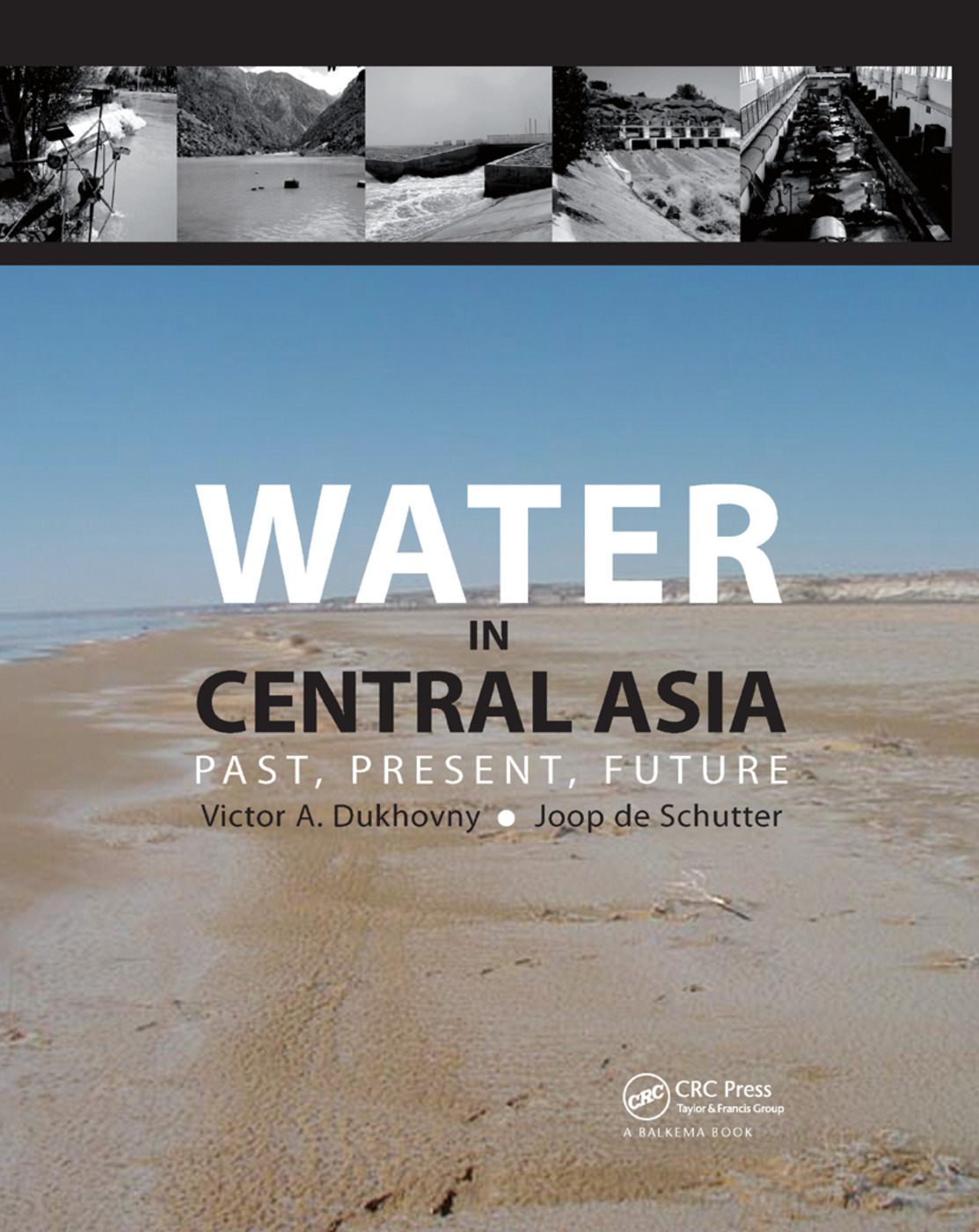 Water in Central Asia: Past, Present, Future book cover