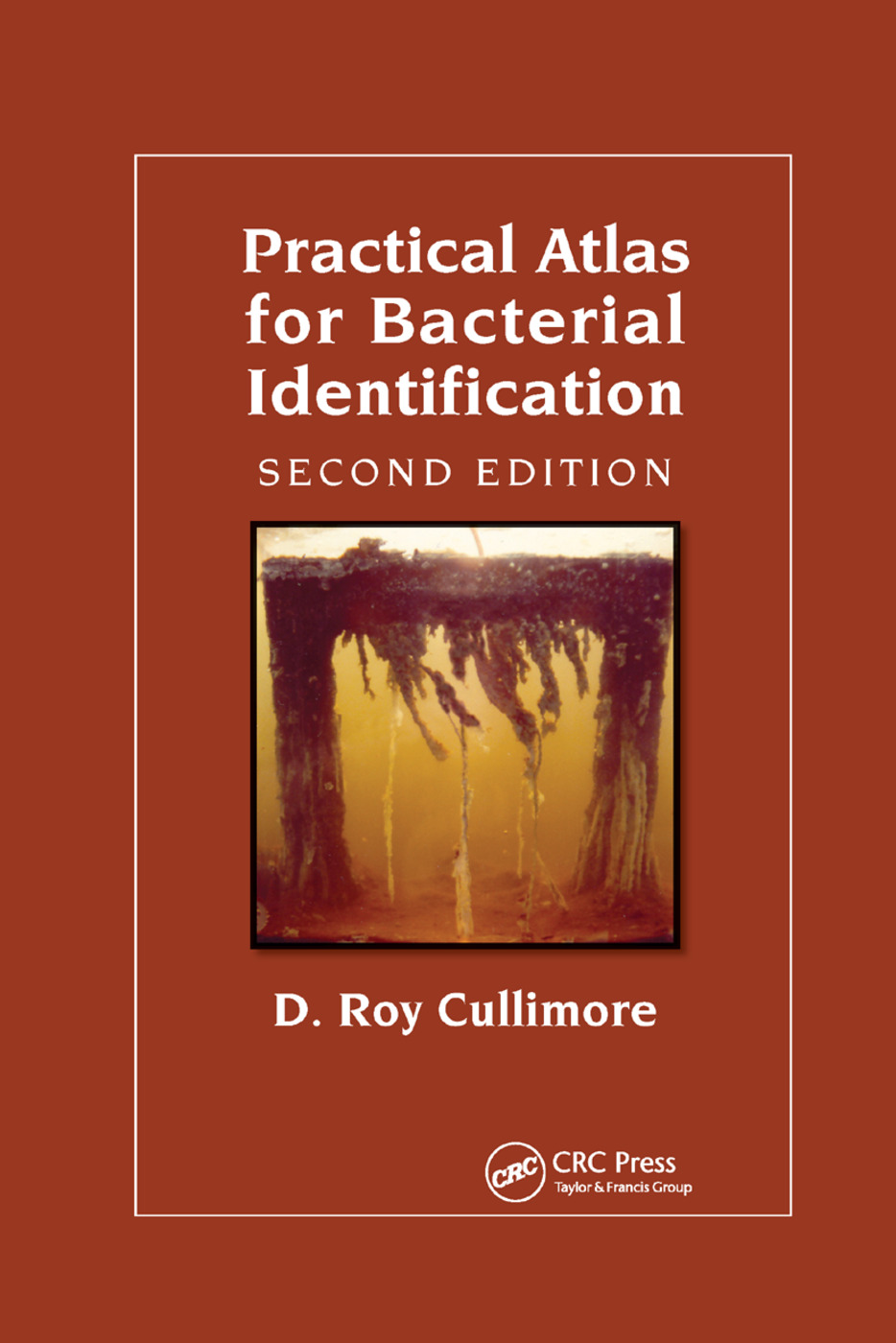 Practical Atlas for Bacterial Identification: 2nd Edition (Paperback) book cover