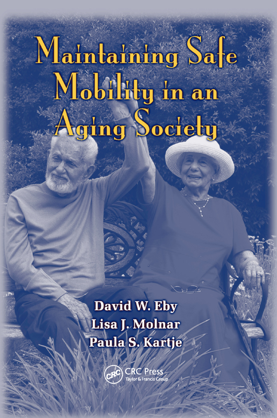 Maintaining Safe Mobility in an Aging Society: 1st Edition (Paperback) book cover