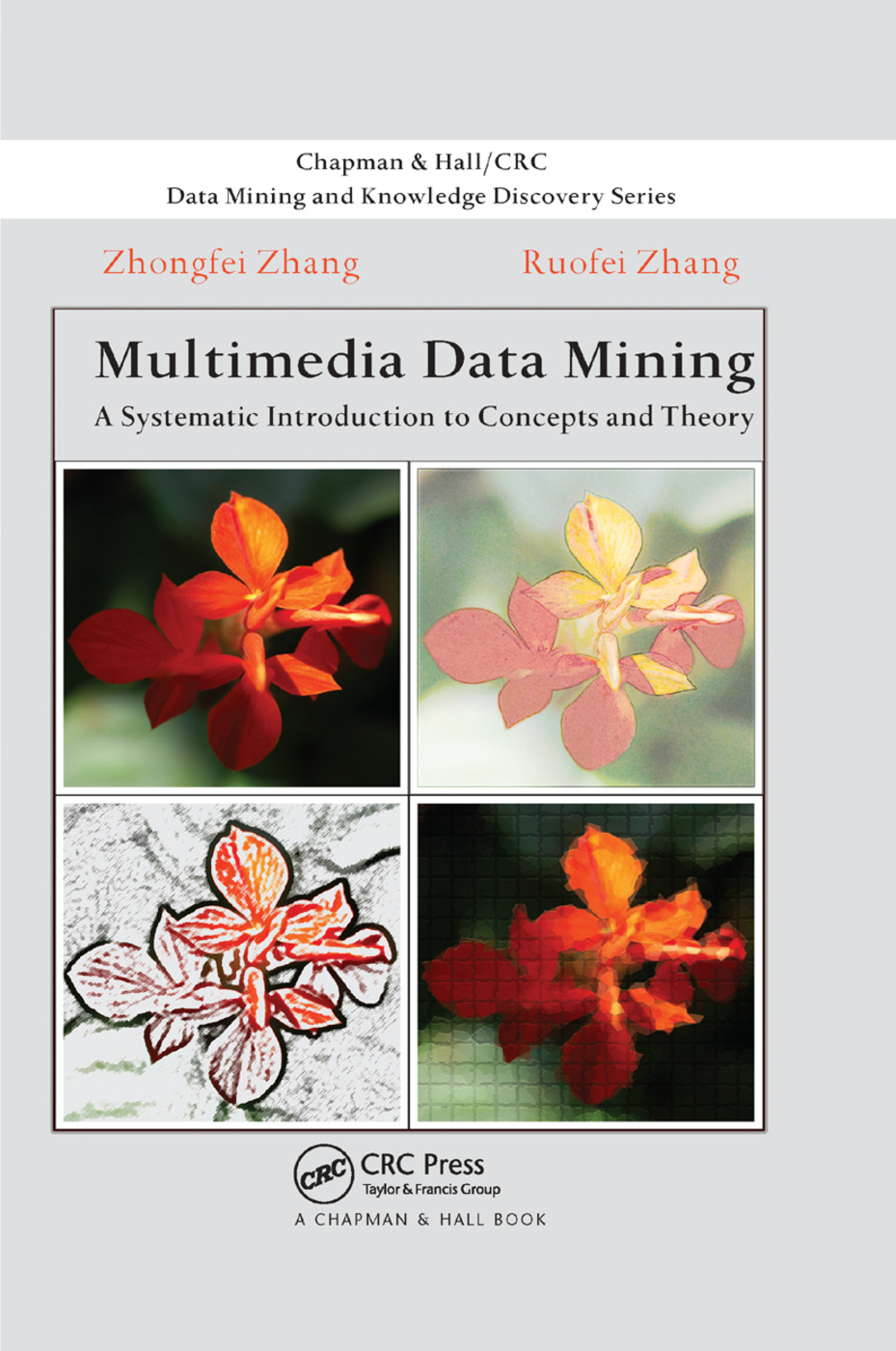 Multimedia Data Mining: A Systematic Introduction to Concepts and Theory, 1st Edition (Paperback) book cover