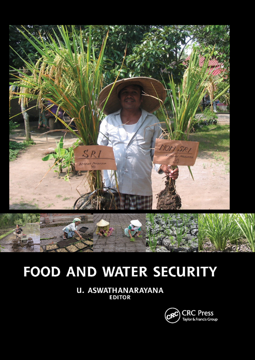 System of Rice Intensification (SRI) to enhance both food and water security