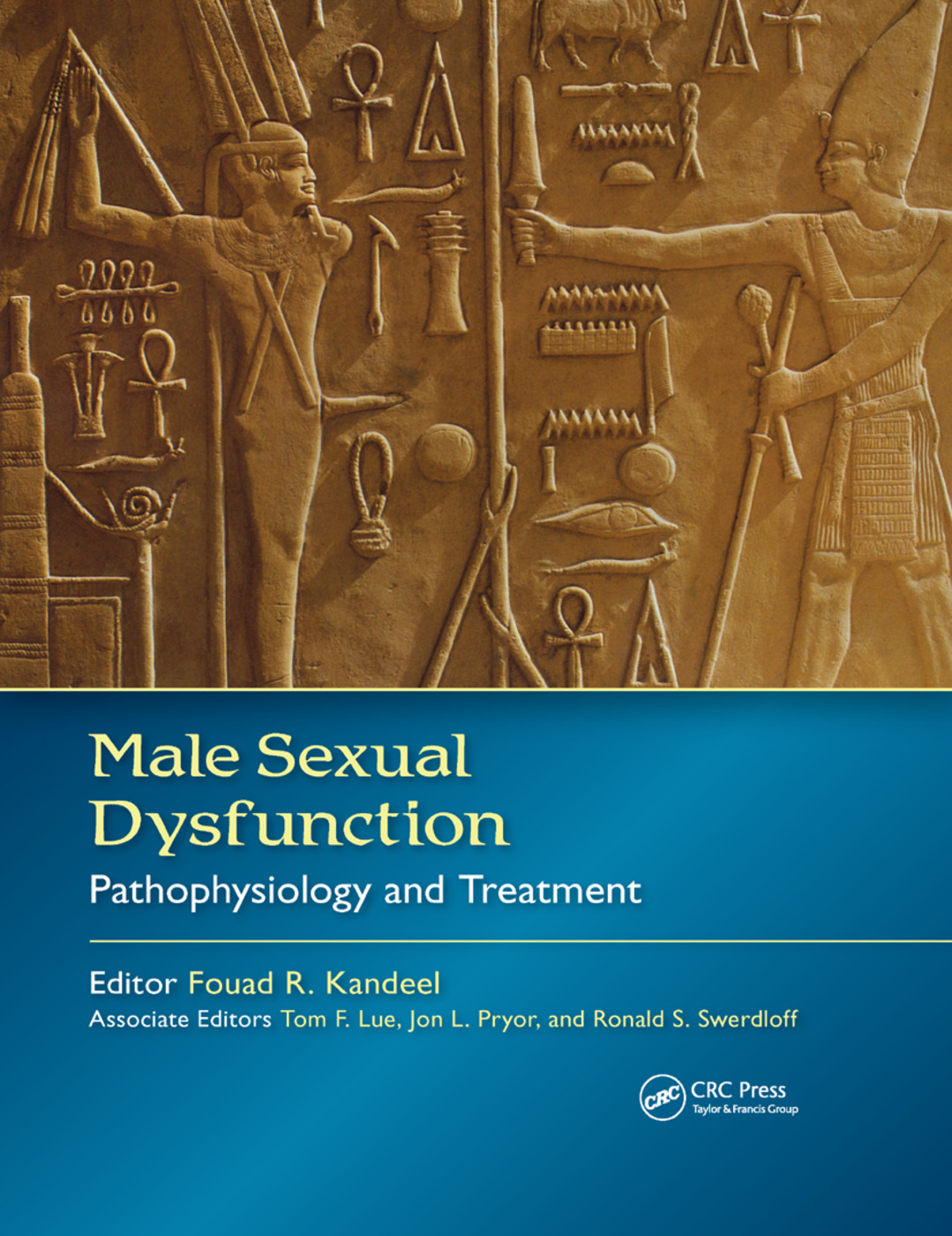 Male Sexual Dysfunction: Pathophysiology and Treatment, 1st Edition (Hardback) book cover