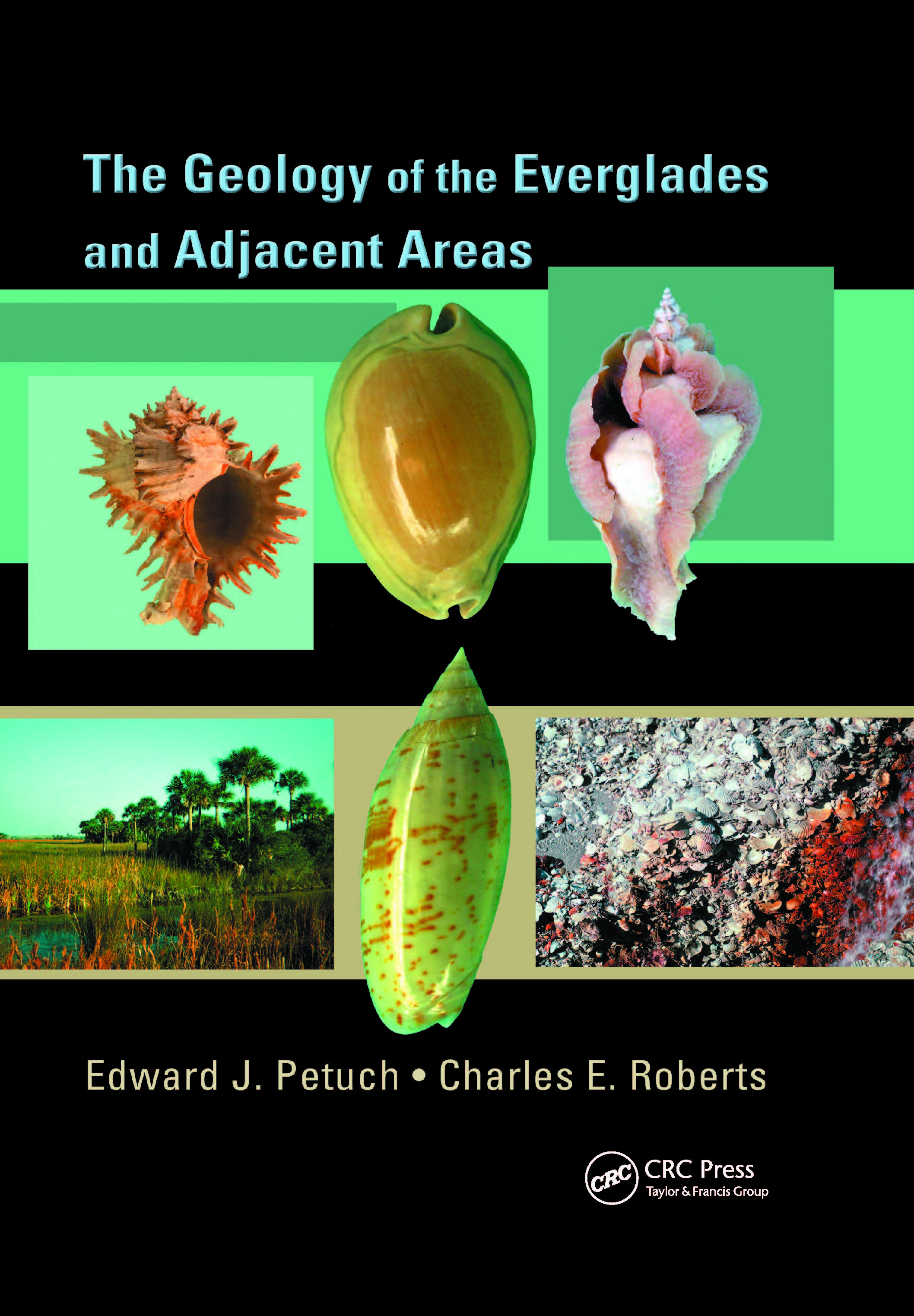 The Geology of the Everglades and Adjacent Areas: 1st Edition (Paperback) book cover