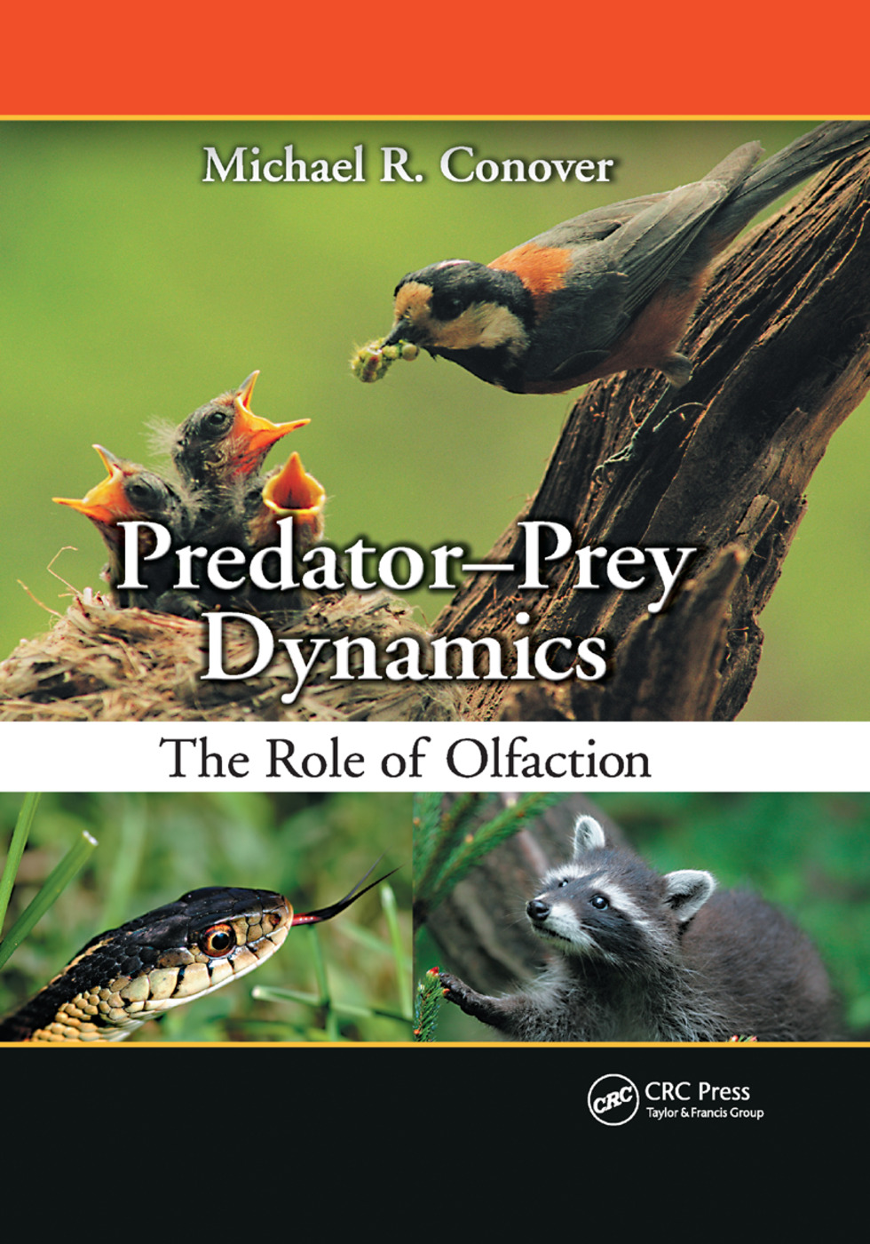 Predator-Prey Dynamics: The Role of Olfaction, 1st Edition (Paperback) book cover