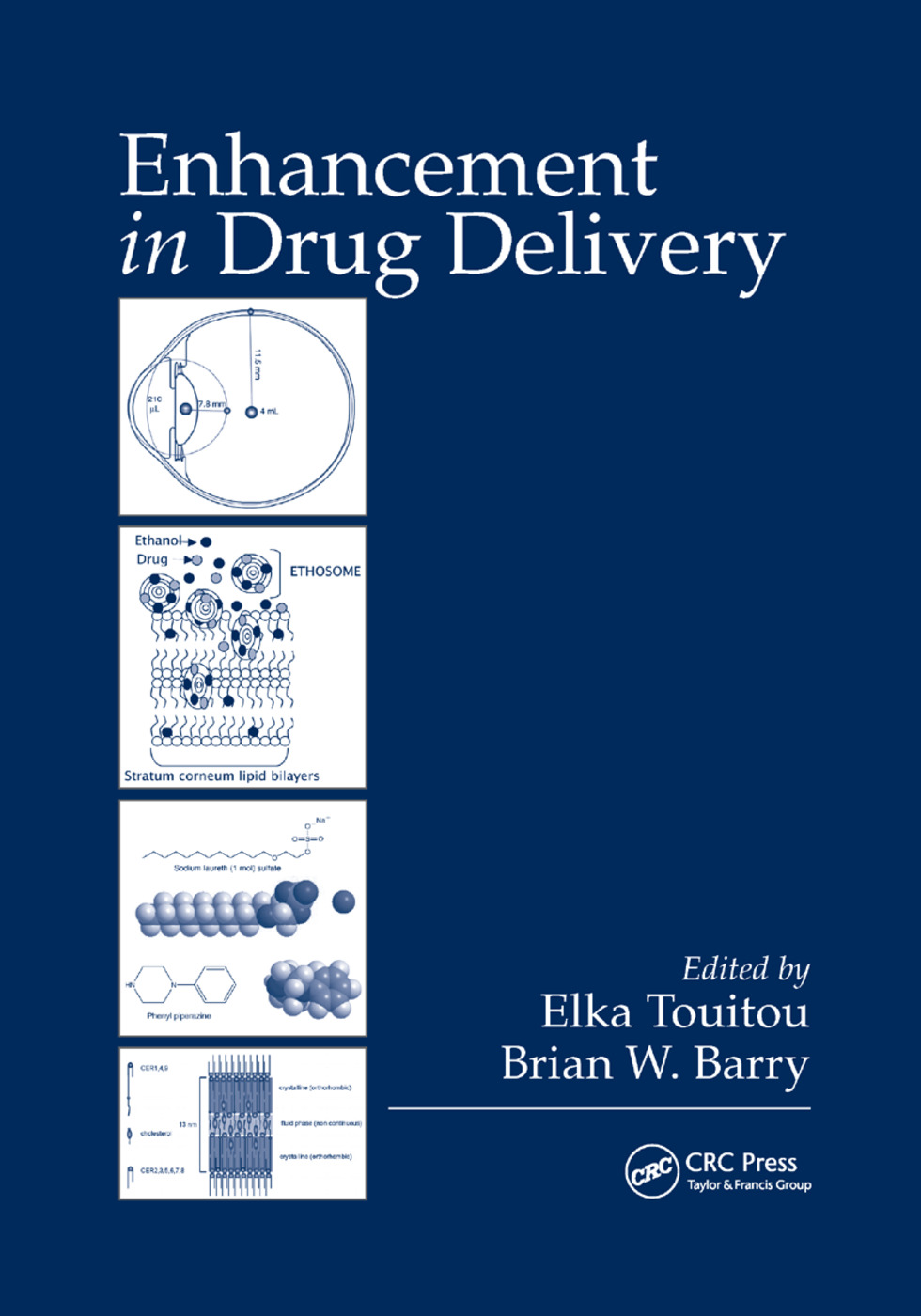 Enhancement in Drug Delivery: 1st Edition (Paperback) book cover