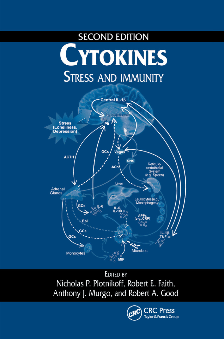 Cytokines: Stress and Immunity, Second Edition, 2nd Edition (Paperback) book cover