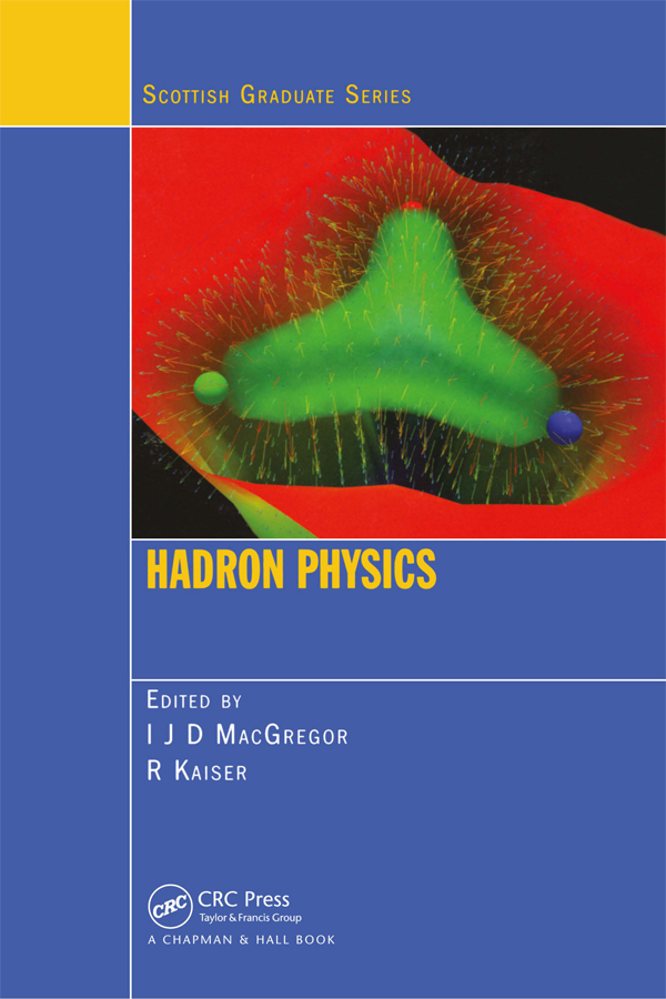 Hadron Physics: 1st Edition (Paperback) book cover