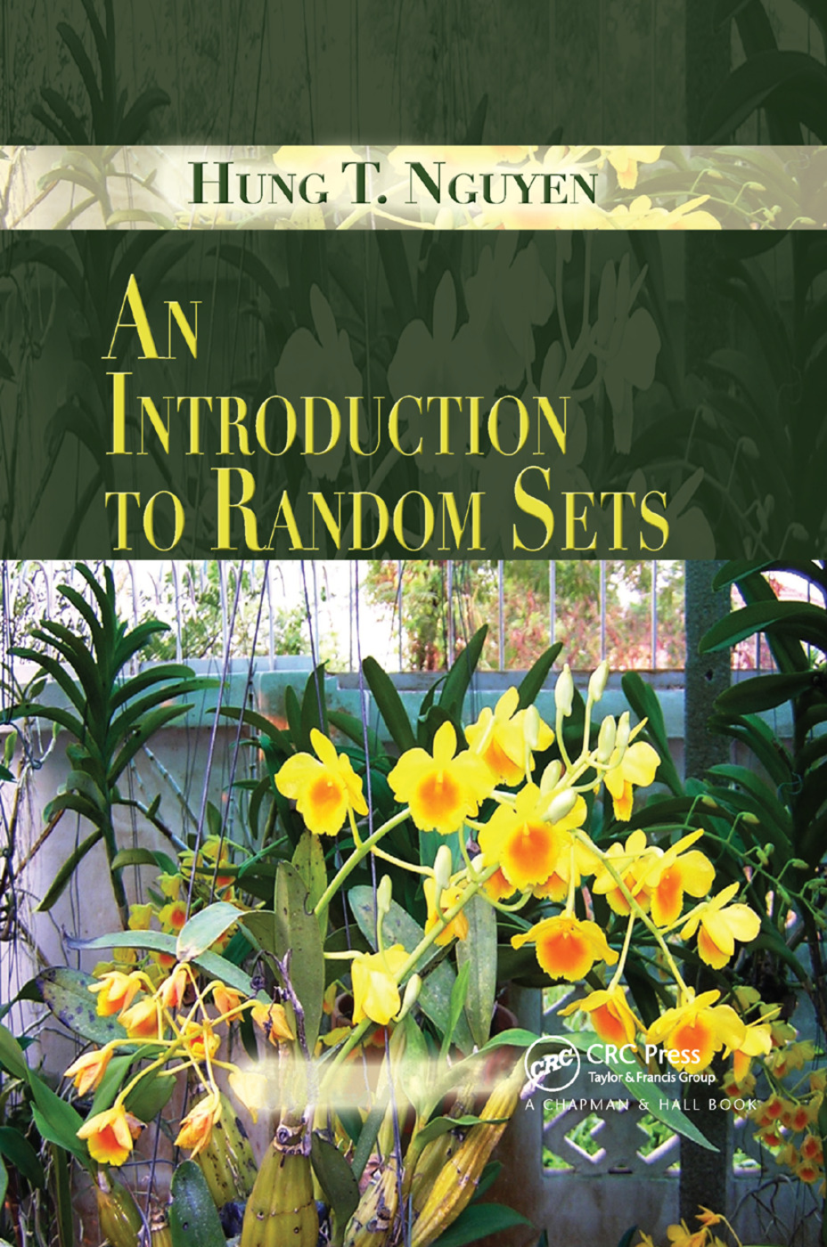 An Introduction to Random Sets: 1st Edition (Paperback) book cover