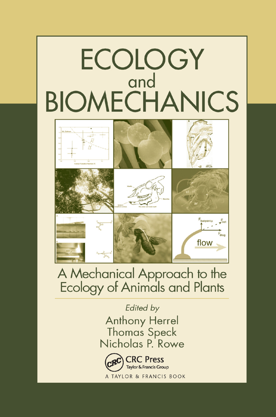 Ecology and Biomechanics: A Mechanical Approach to the Ecology of Animals and Plants, 1st Edition (Paperback) book cover