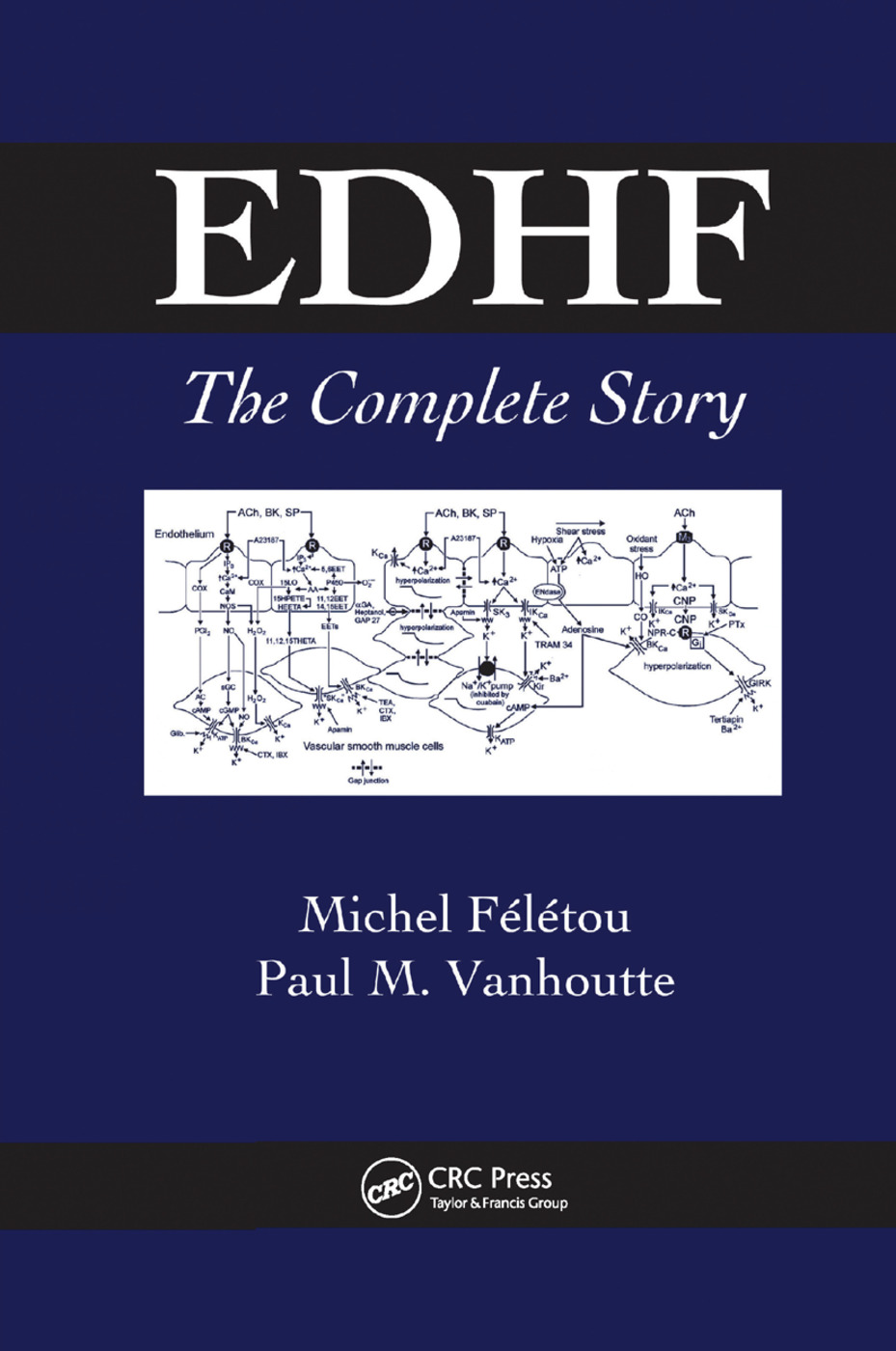 EDHF: The Complete Story, 1st Edition (Paperback) book cover